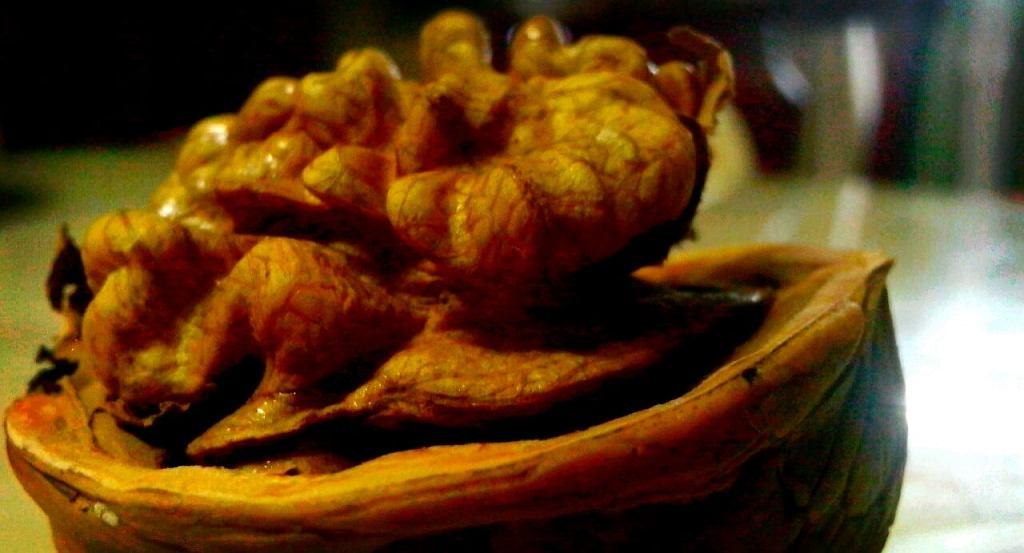 мозг с грецкий орех