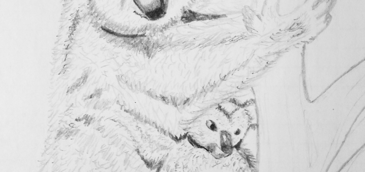 Koala Karandashom