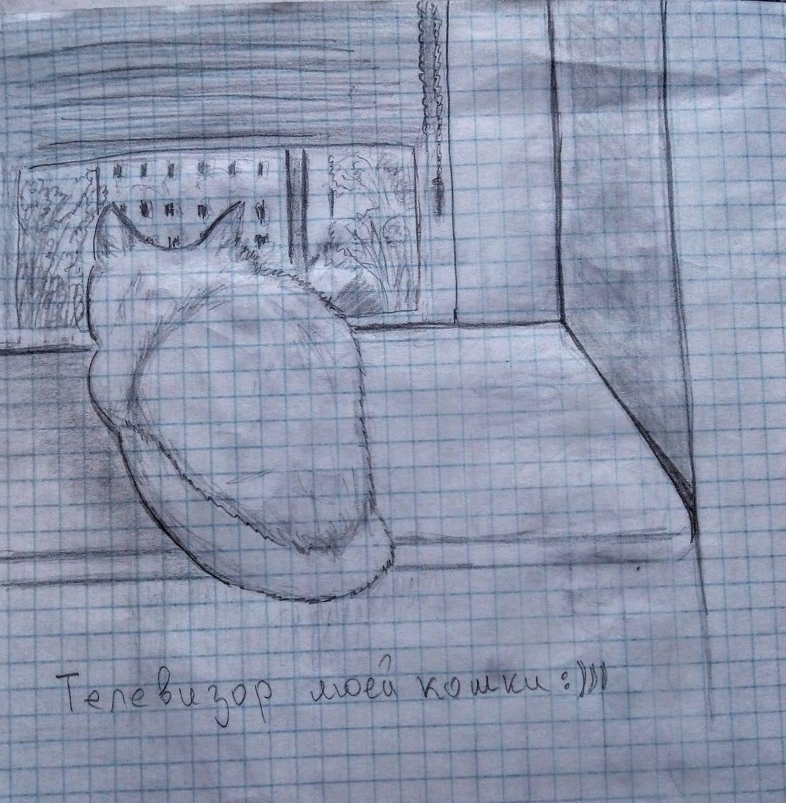Televizor Koshki