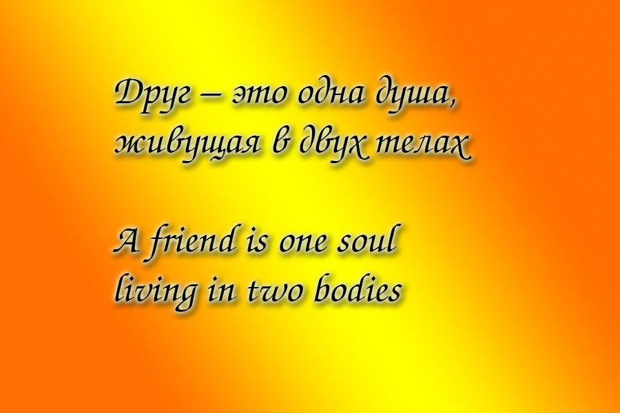 Druzhba Tsitaty 1