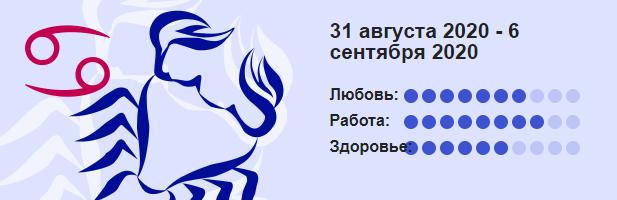 Rak 31