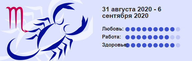 Skorpion 31