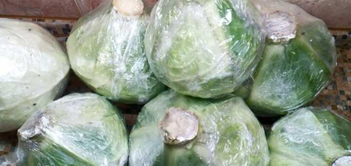 сохраним капусту