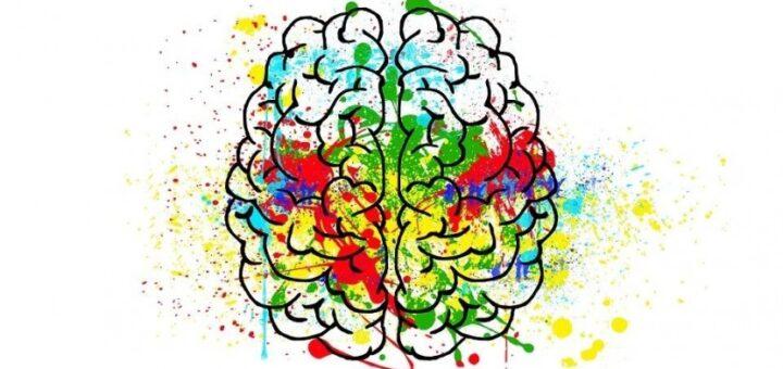 psihologiya mozga