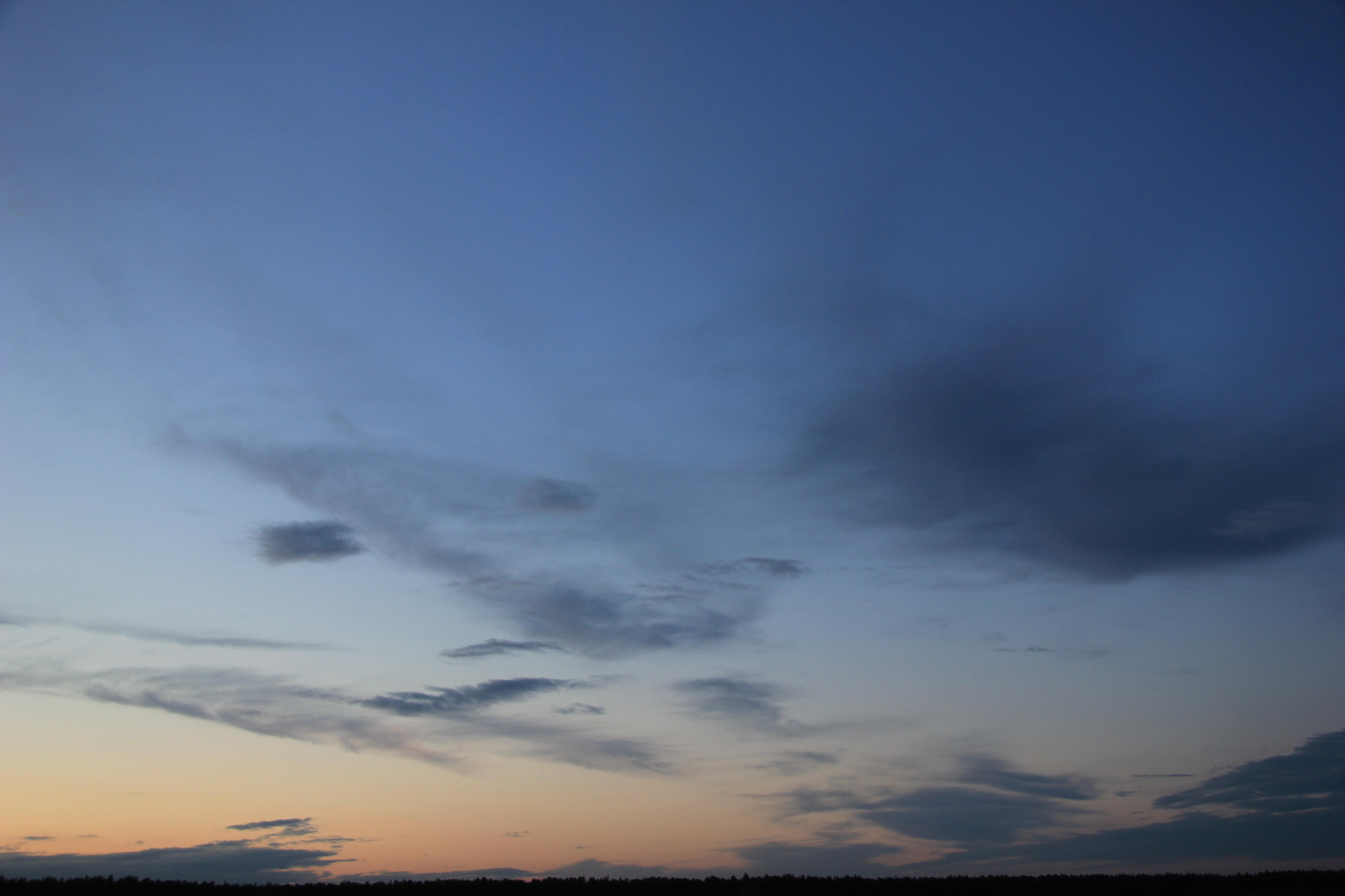 вечернее небо (80)