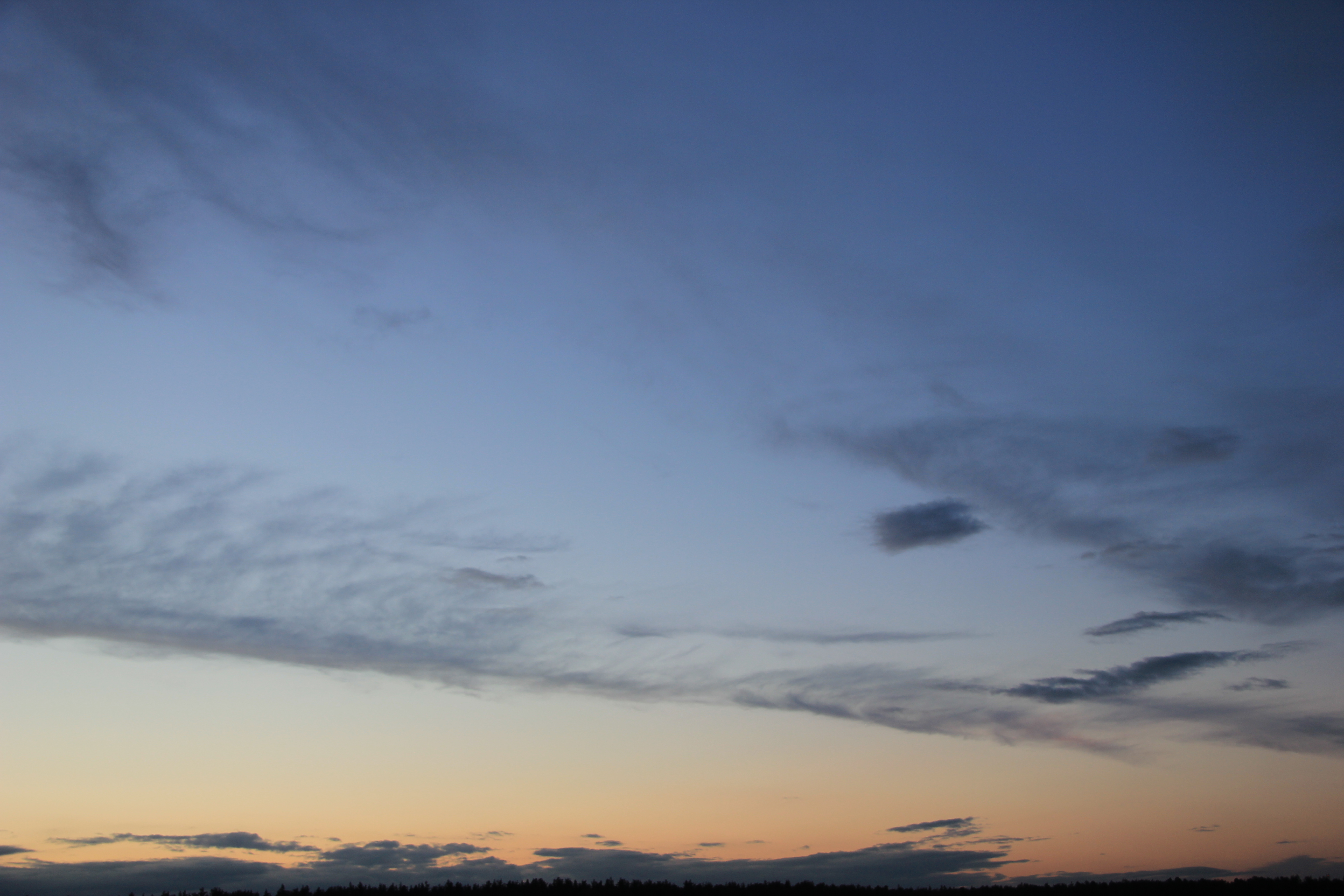вечернее небо (81)