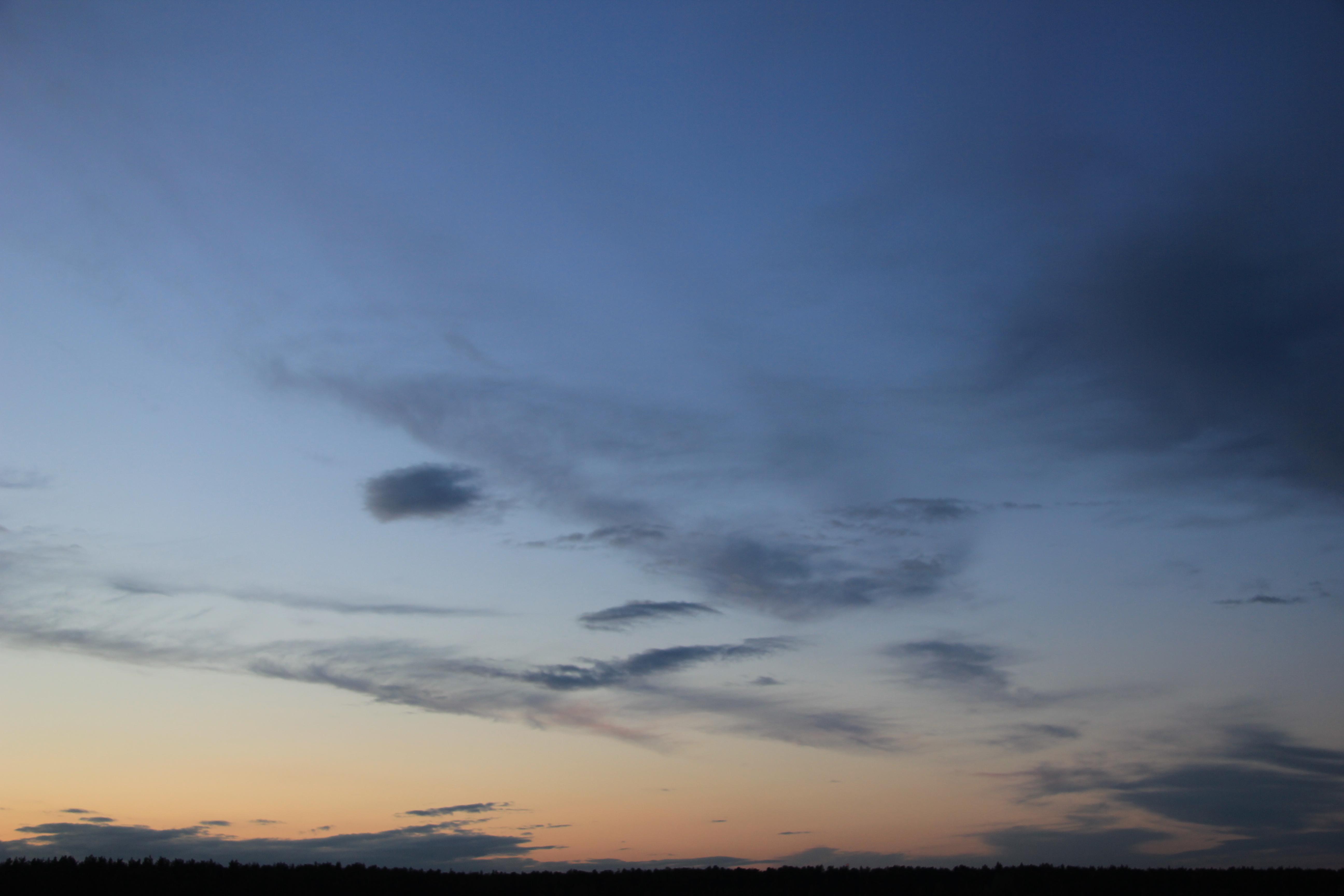вечернее небо (85)