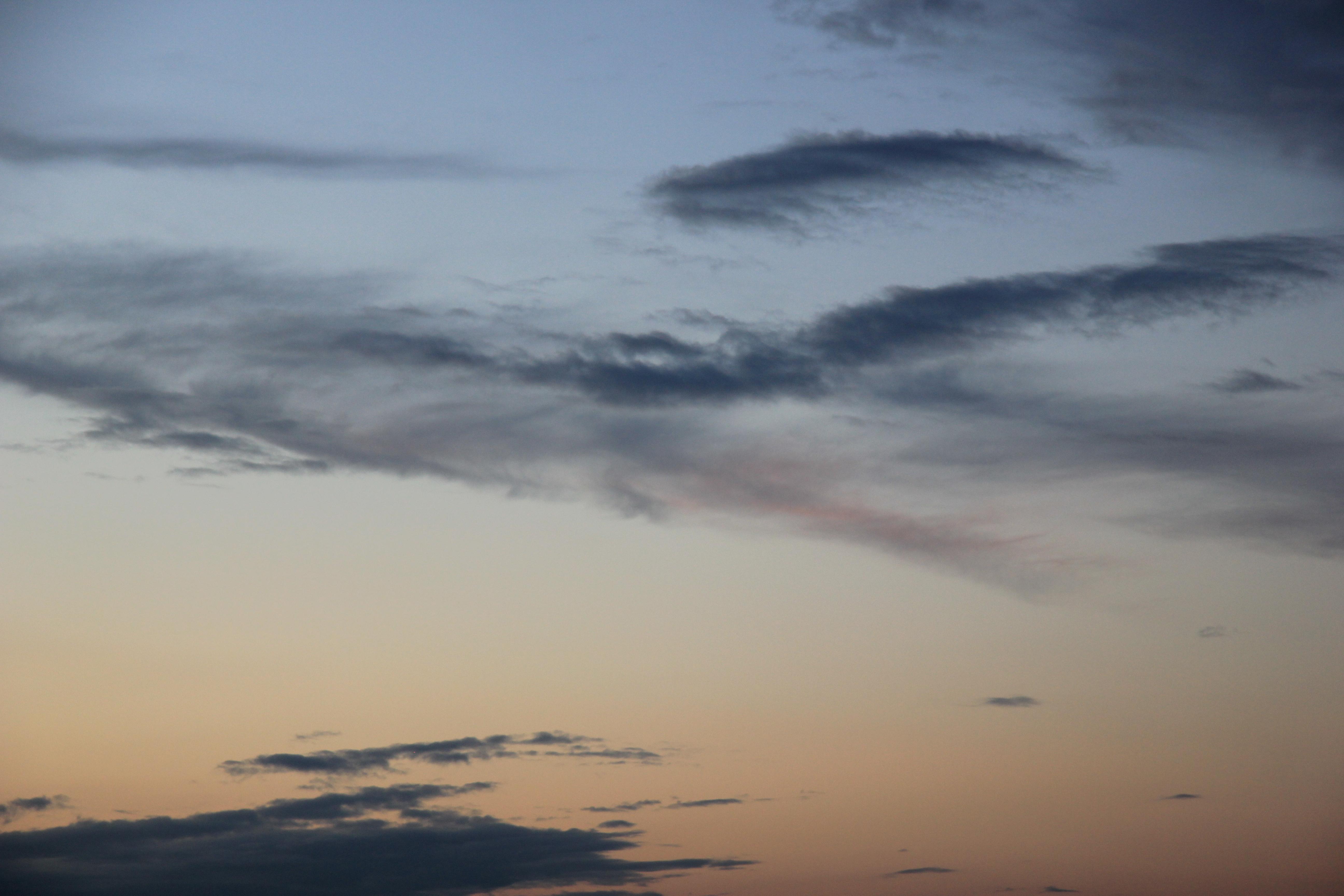 вечернее небо (94)