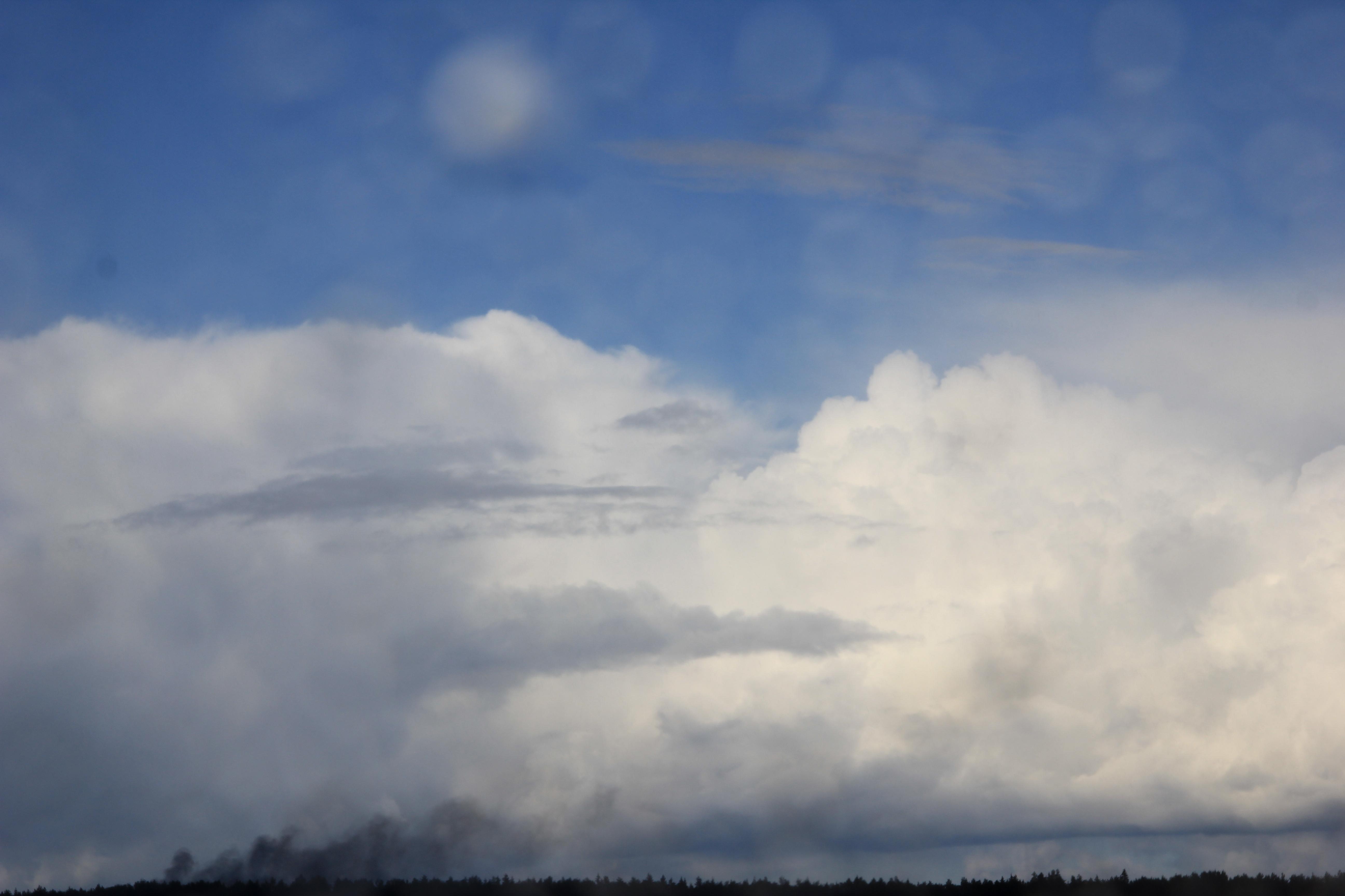 дождливое небо (38)
