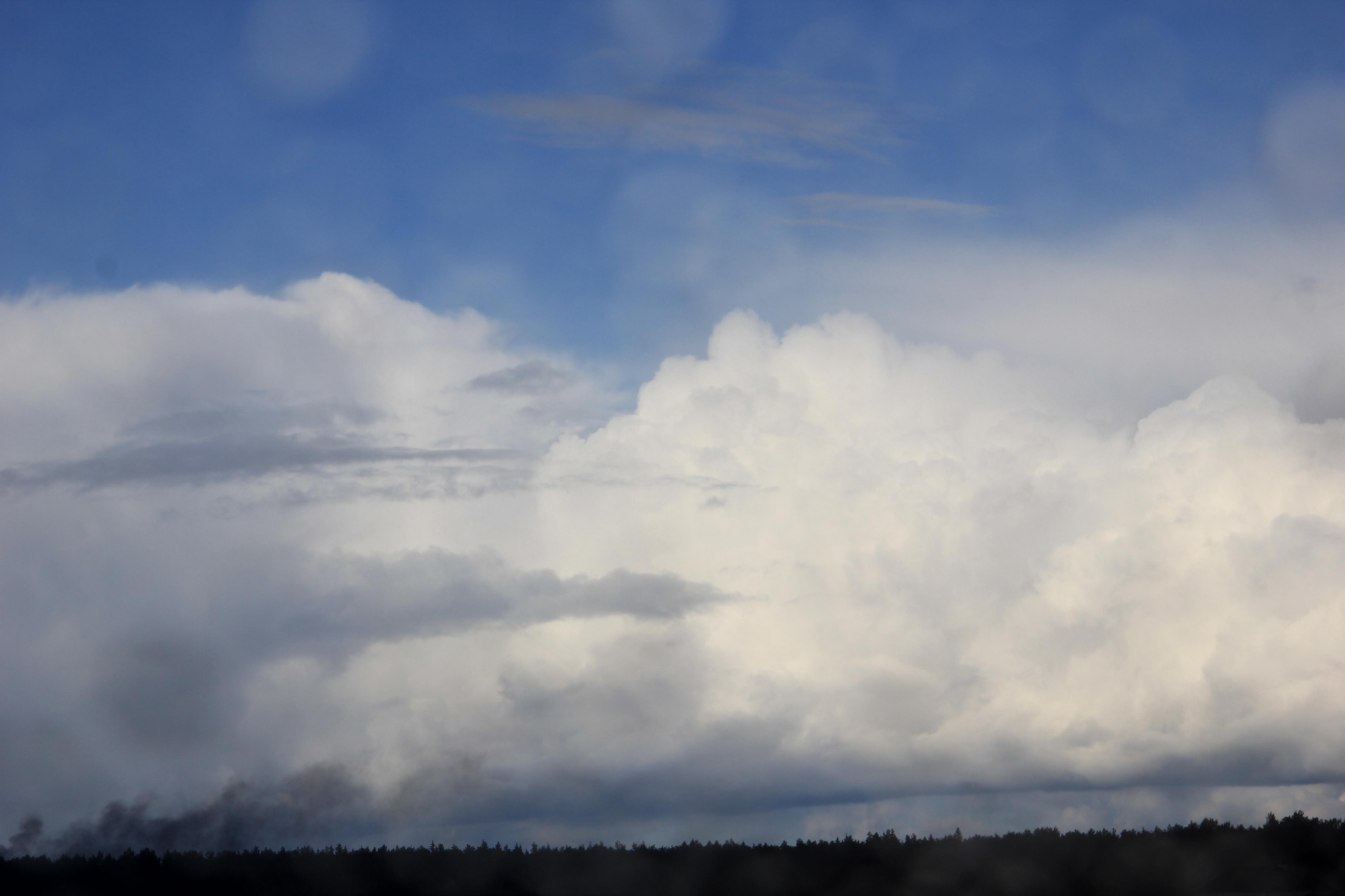 дождливое небо (39)
