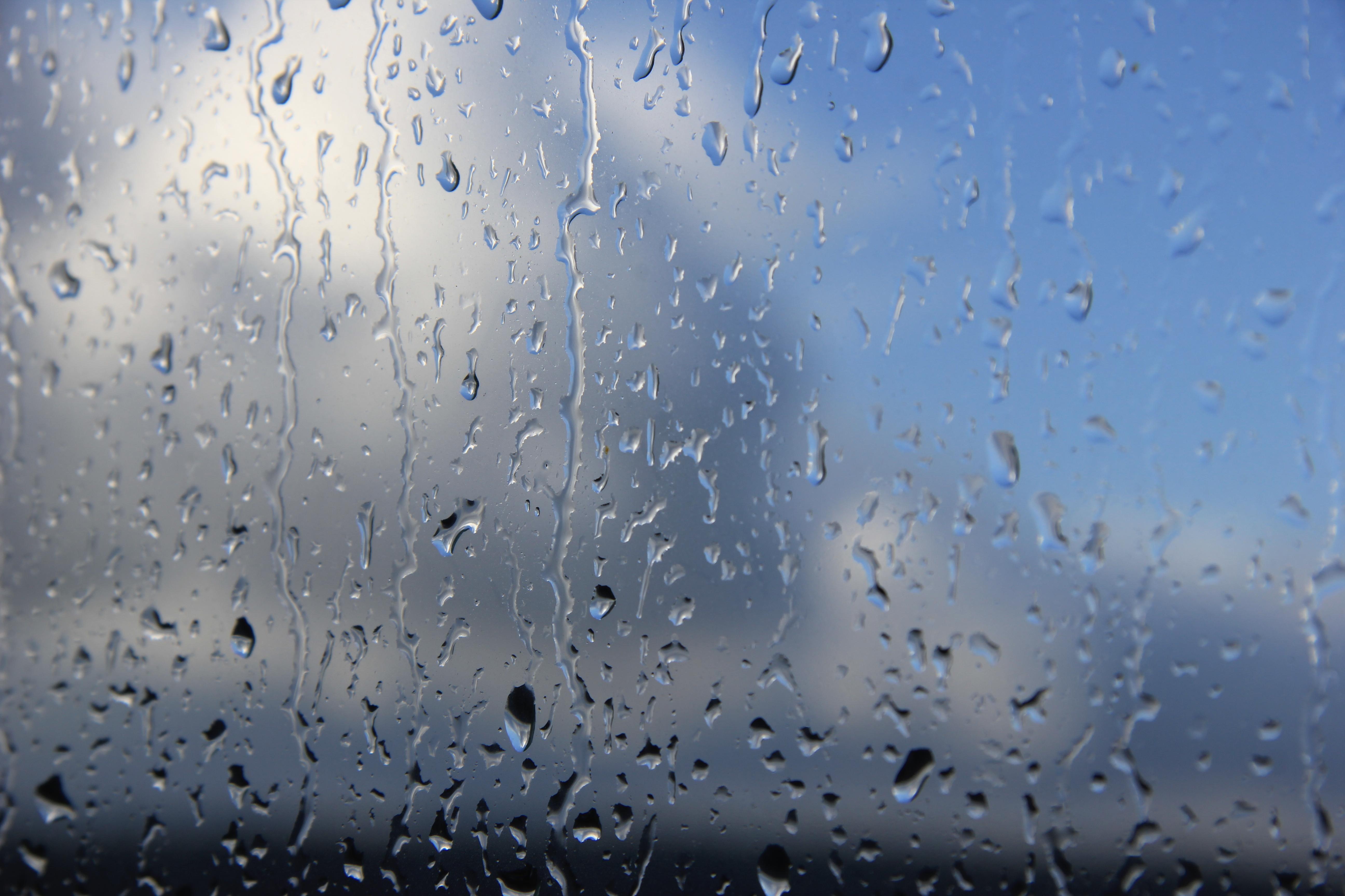 дождливое небо (40)