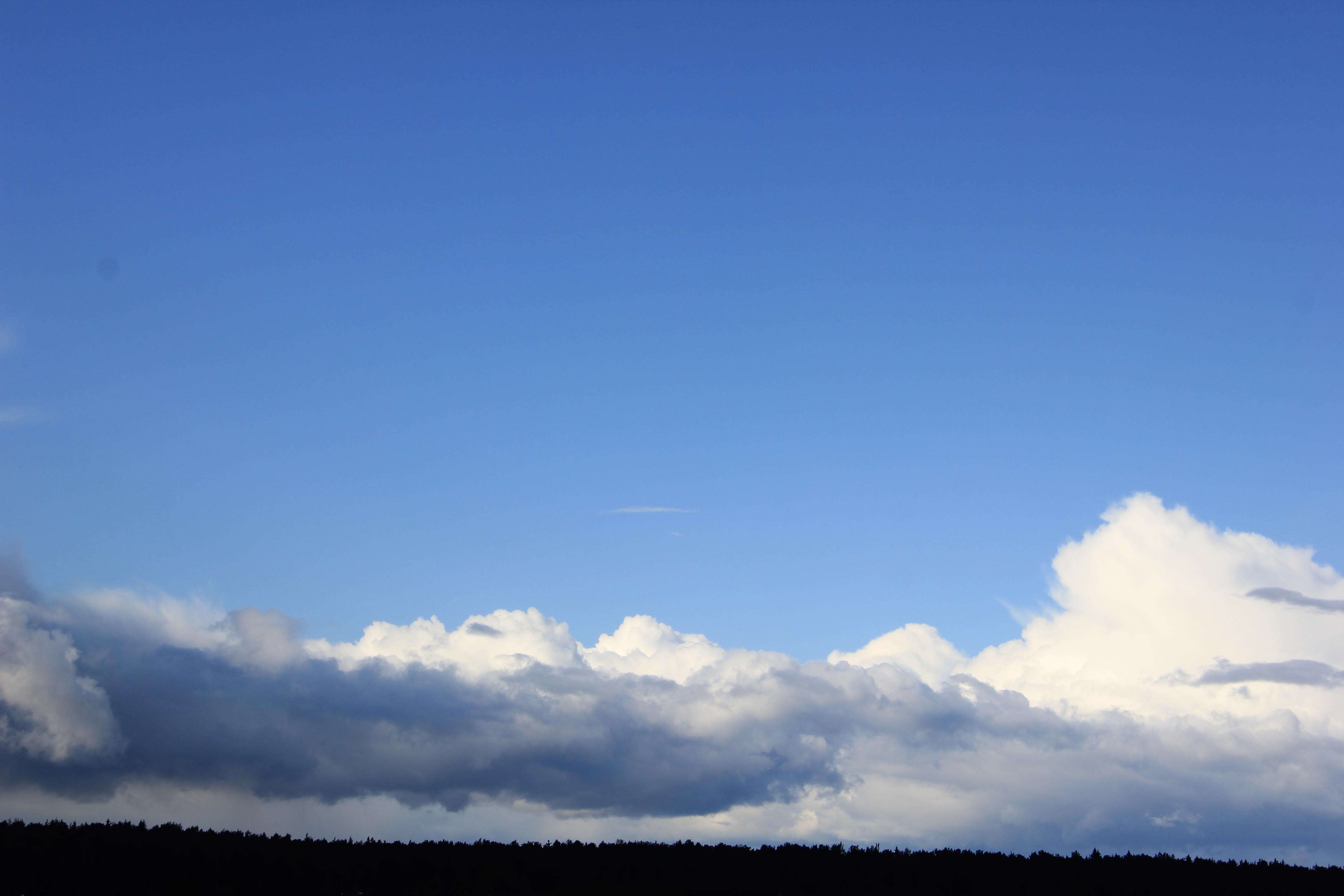 дождвое небо (1)