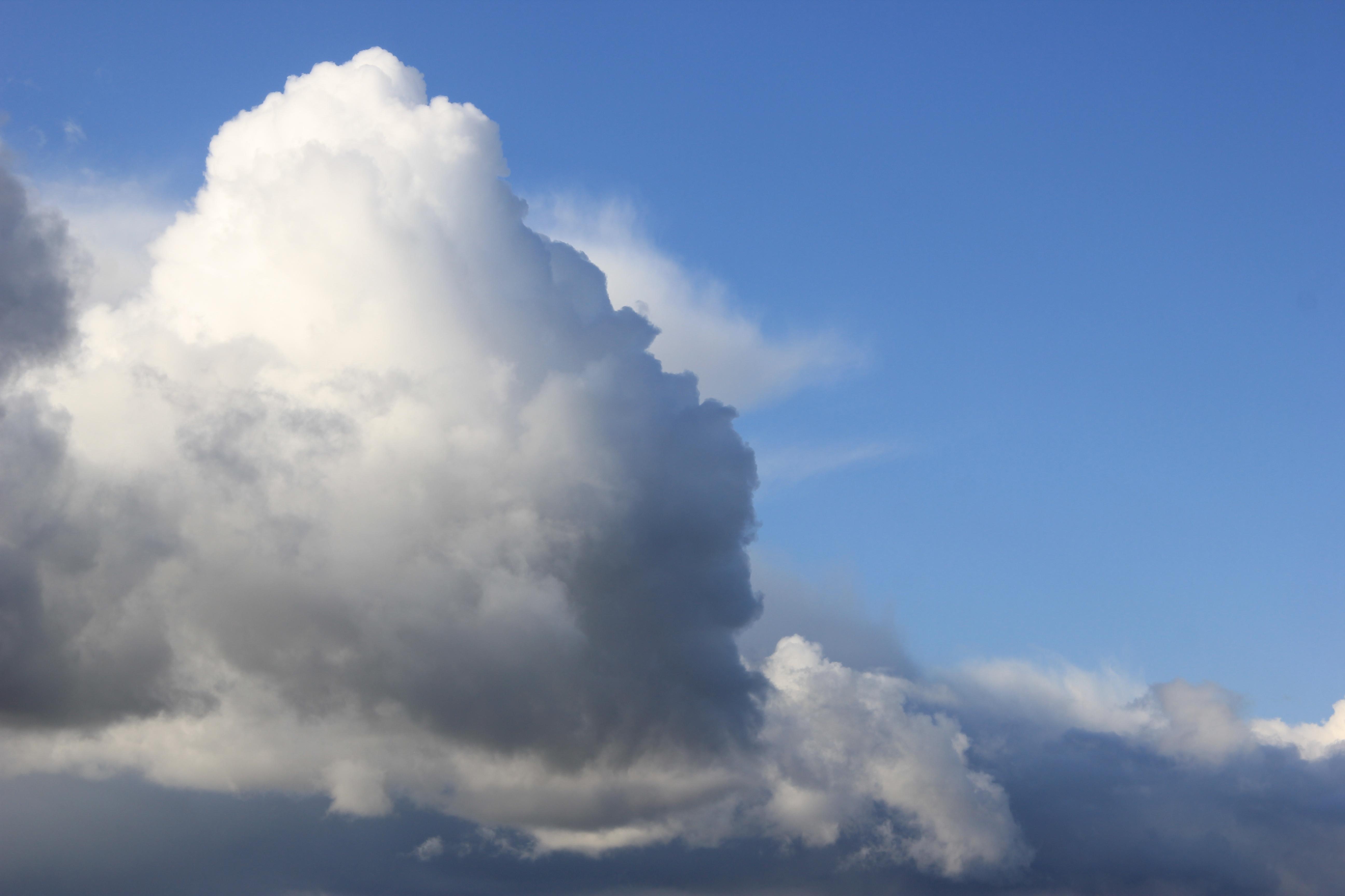 дождвое небо (3)