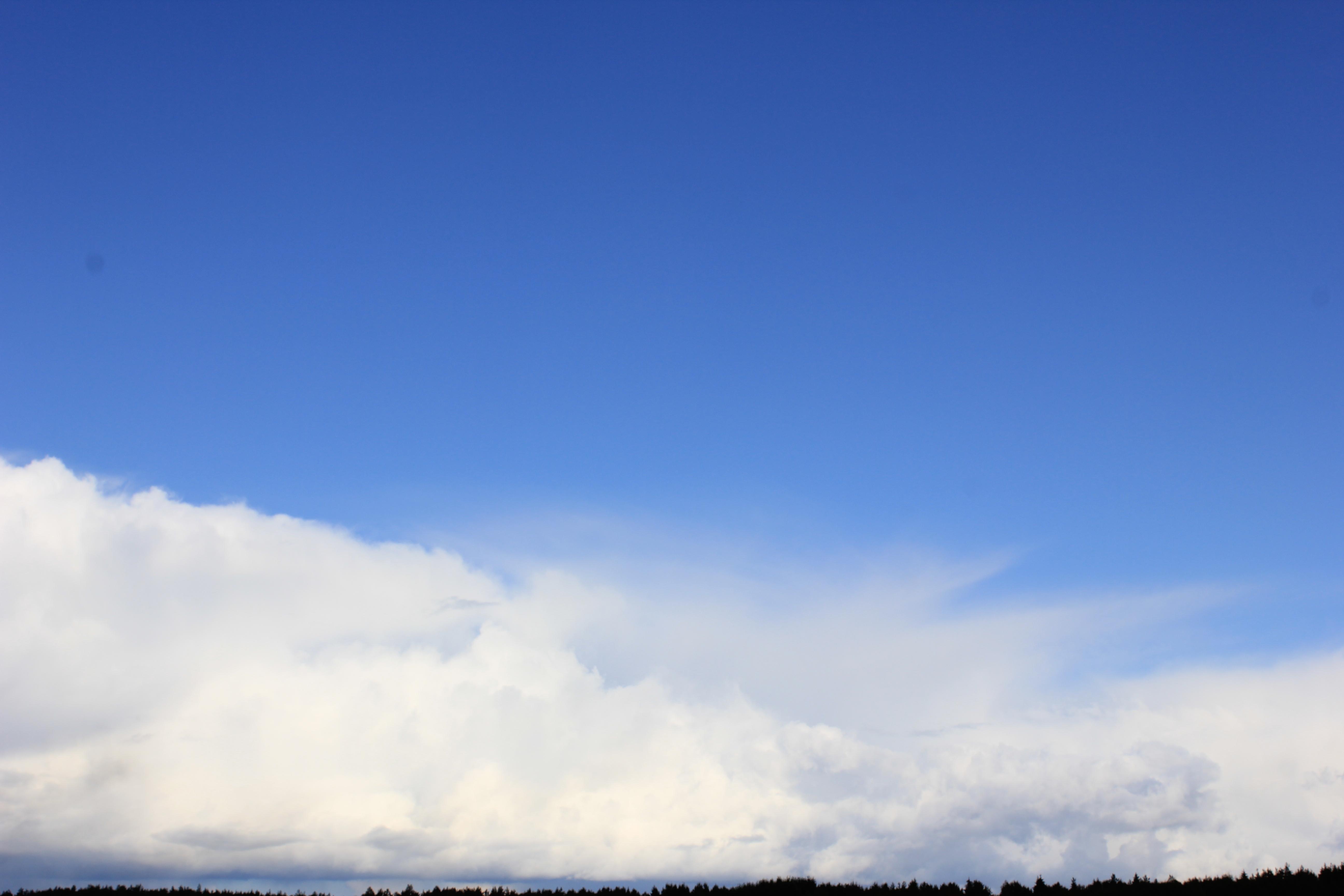 голубое дождливое небо (1)