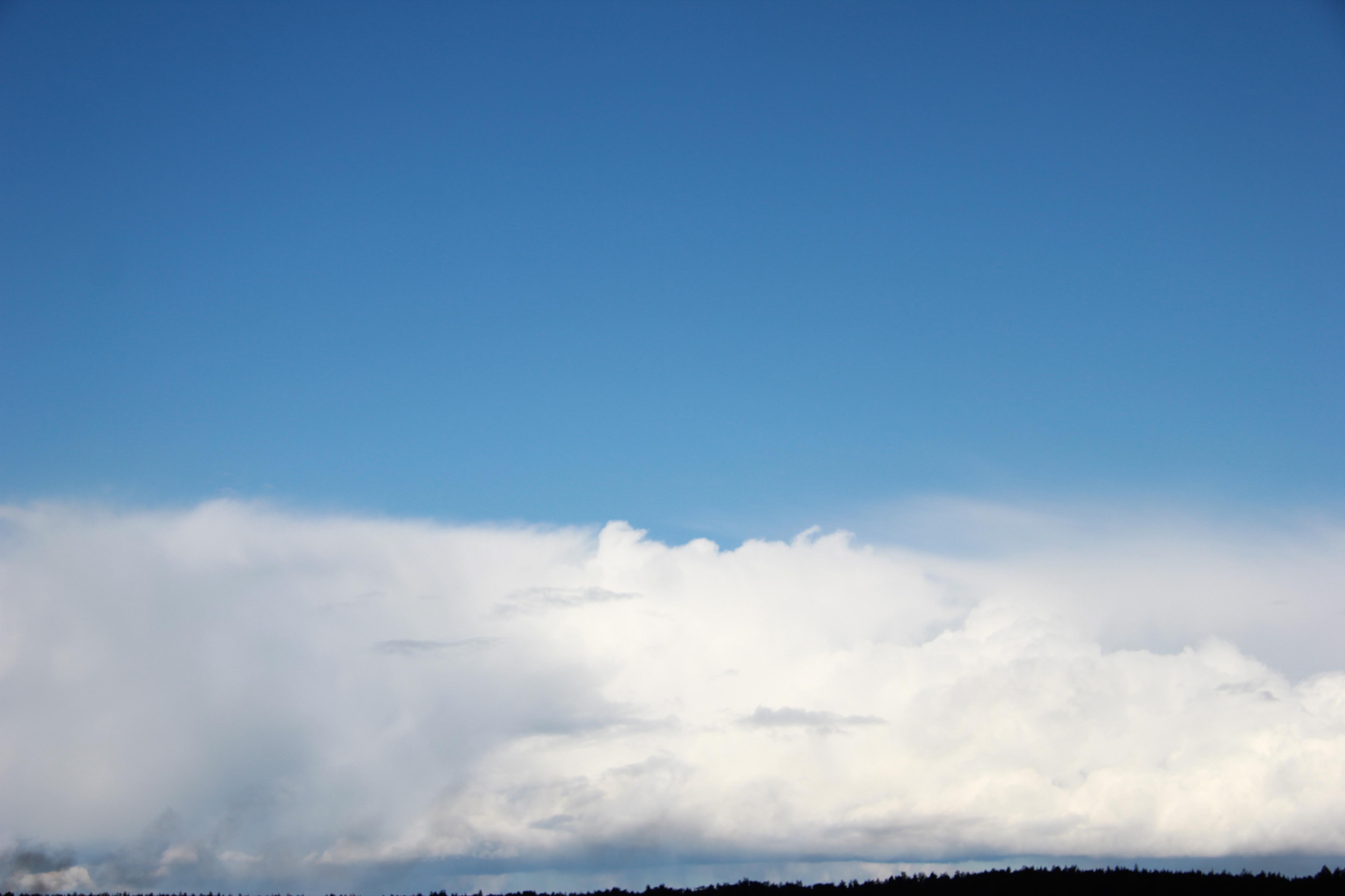 голубое дождливое небо (14)