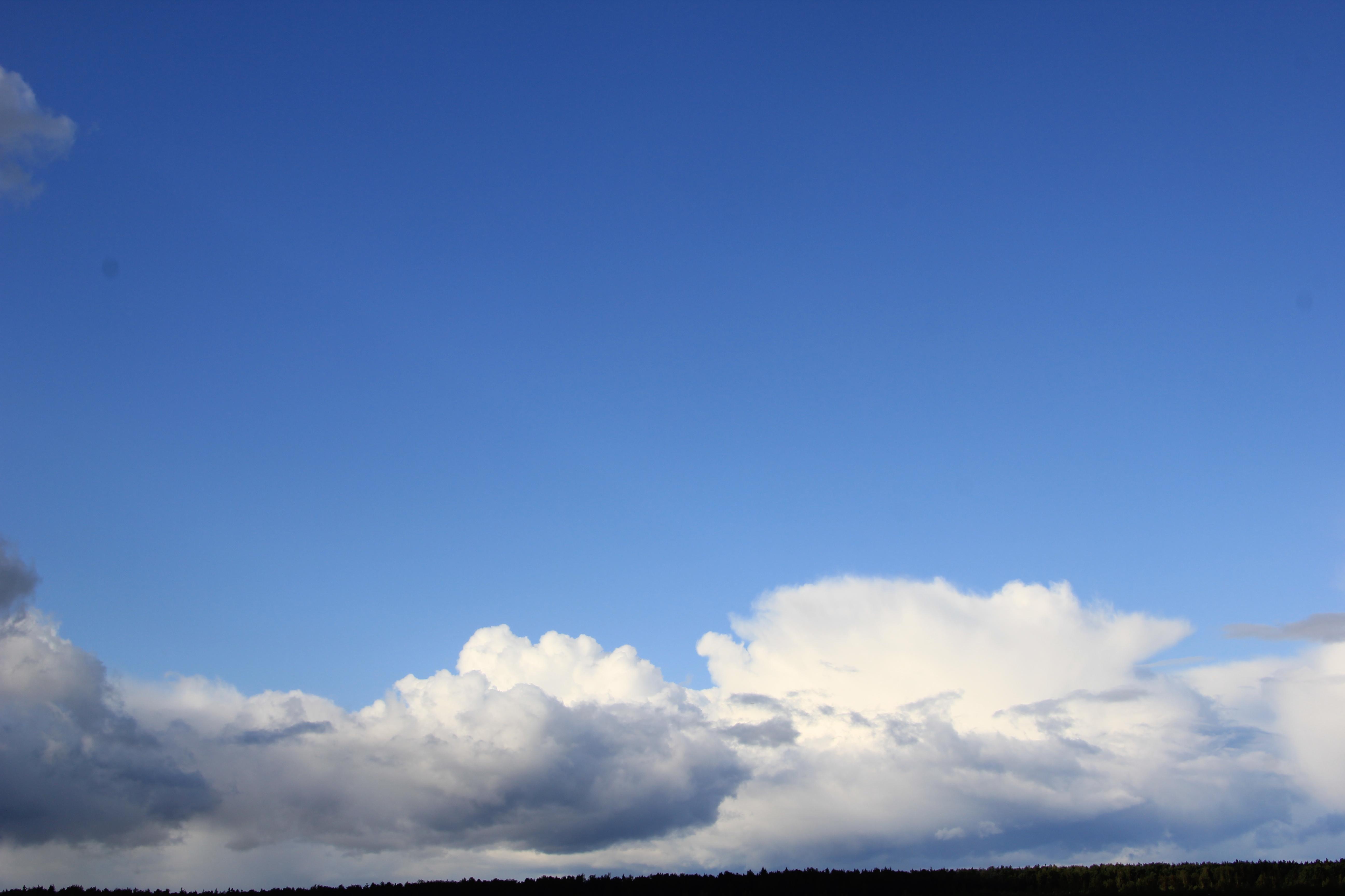 голубое дождливое небо (17)