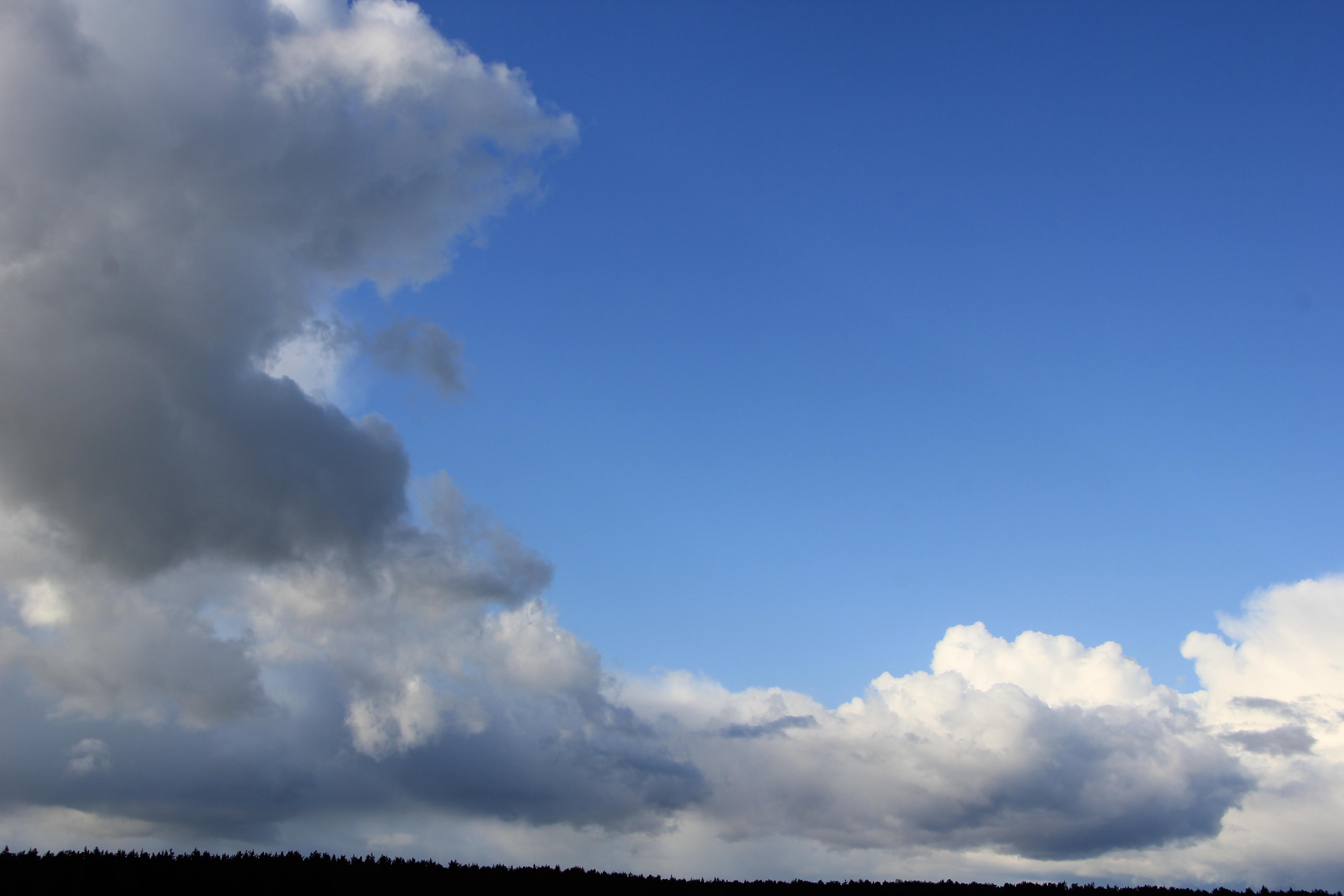 голубое дождливое небо (19)