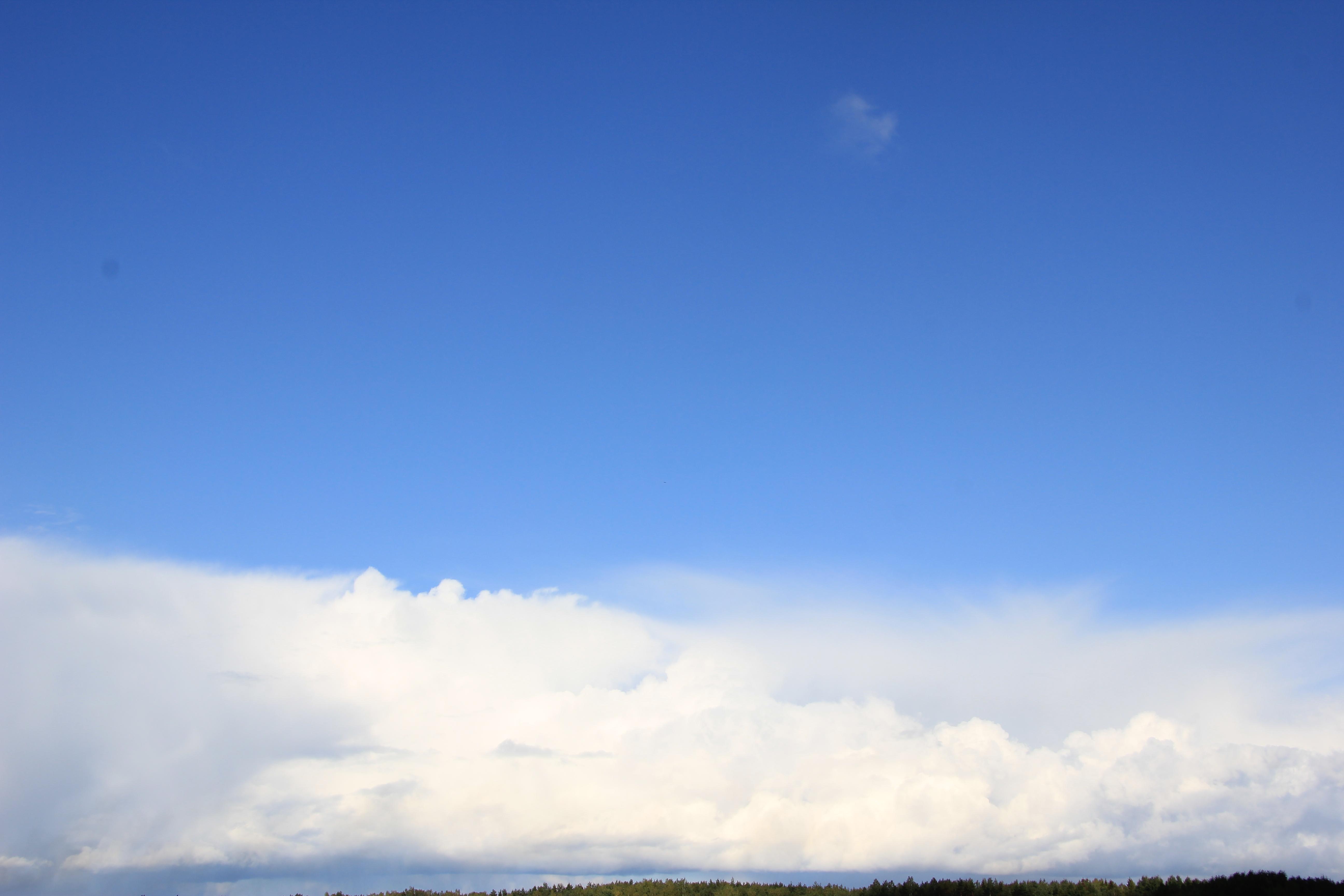 голубое дождливое небо (21)