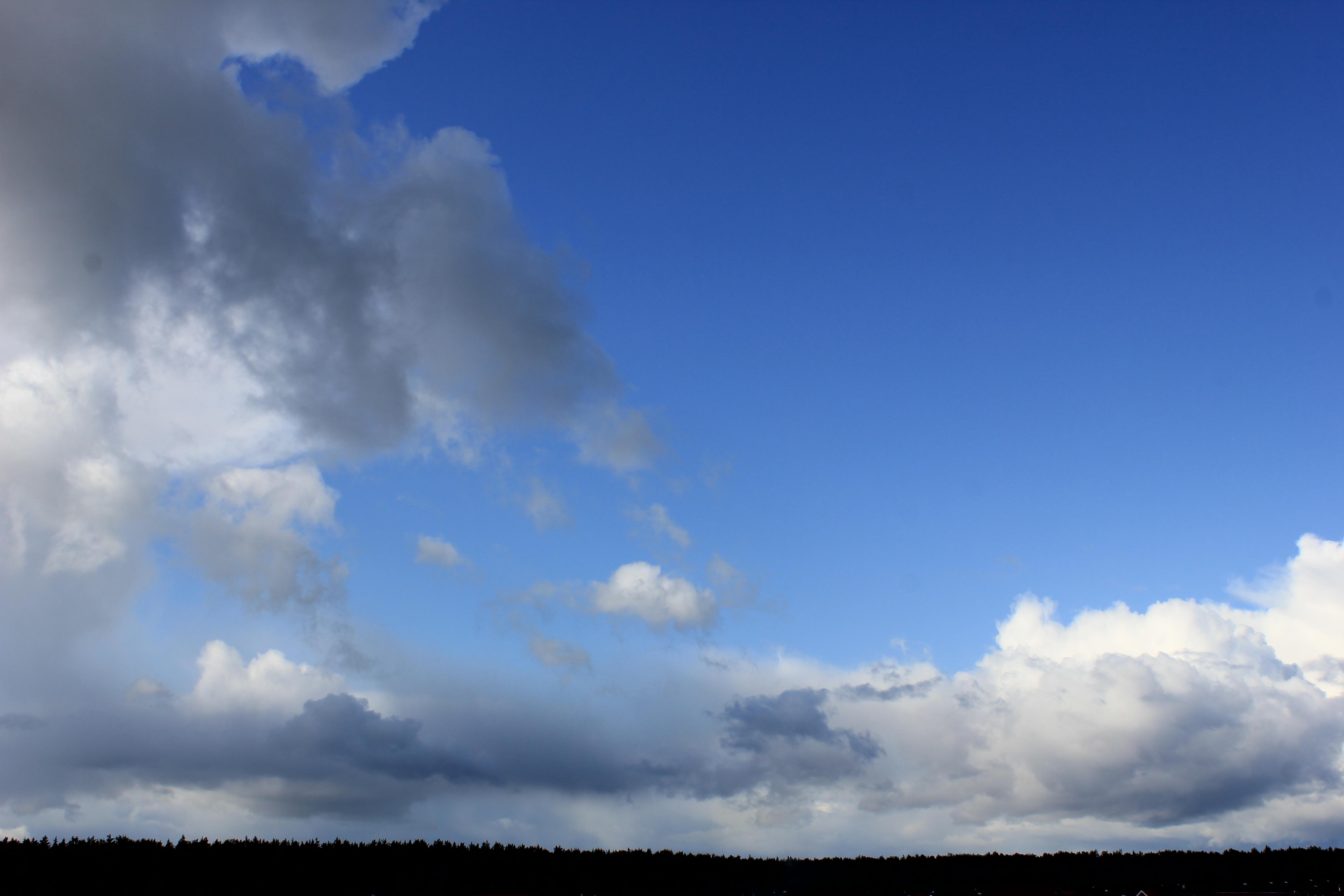 голубое дождливое небо (23)