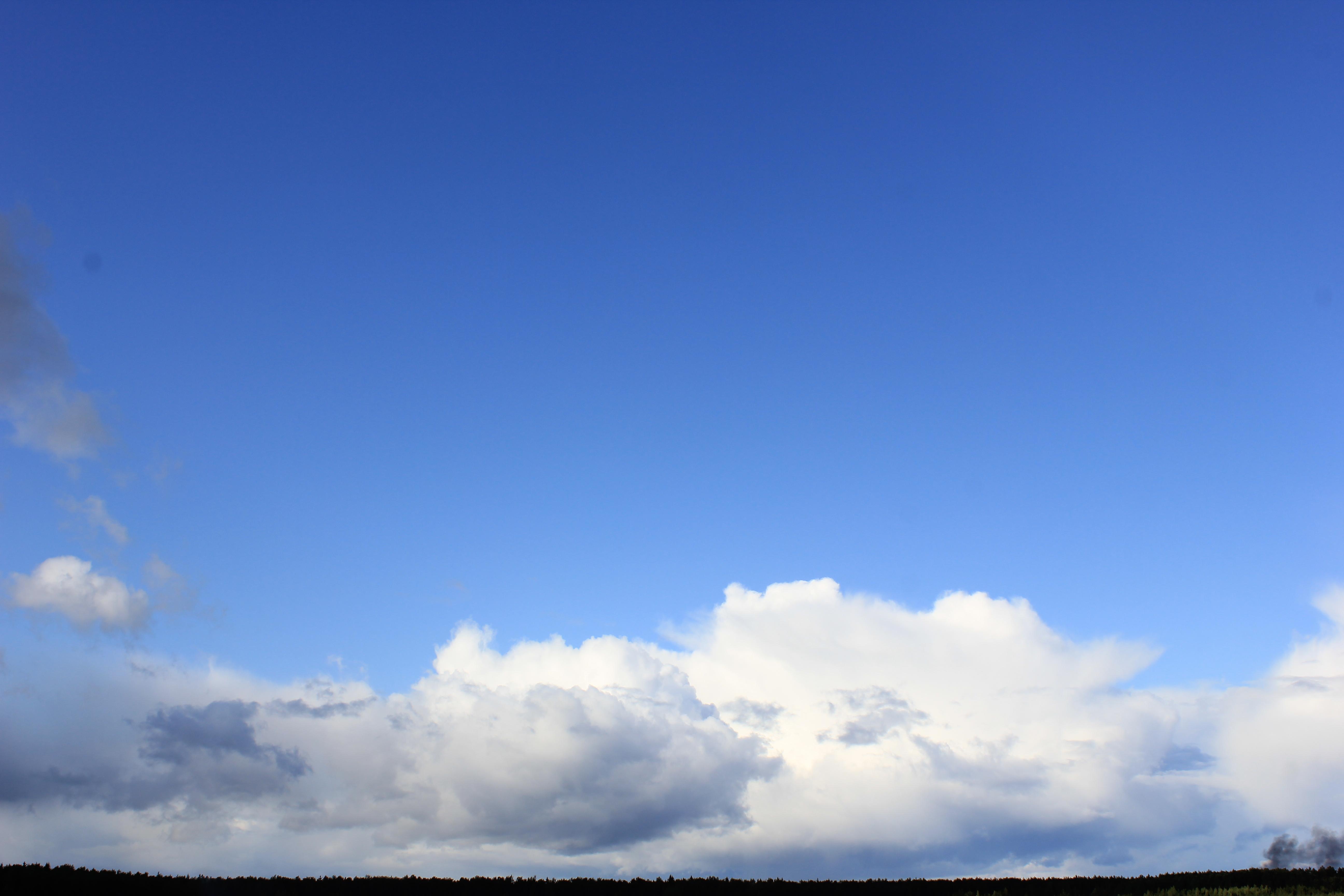 голубое дождливое небо (24)