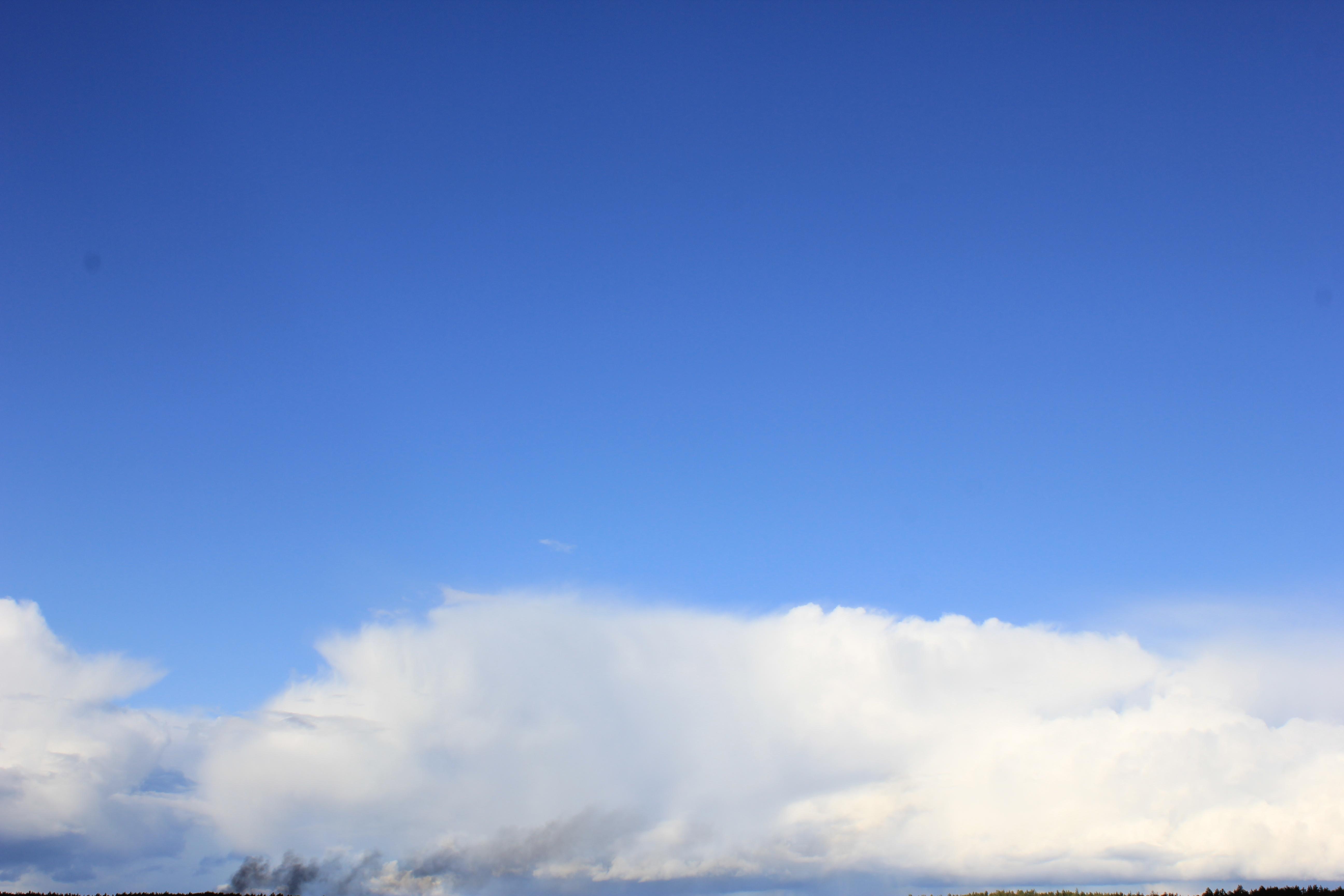 голубое дождливое небо (26)
