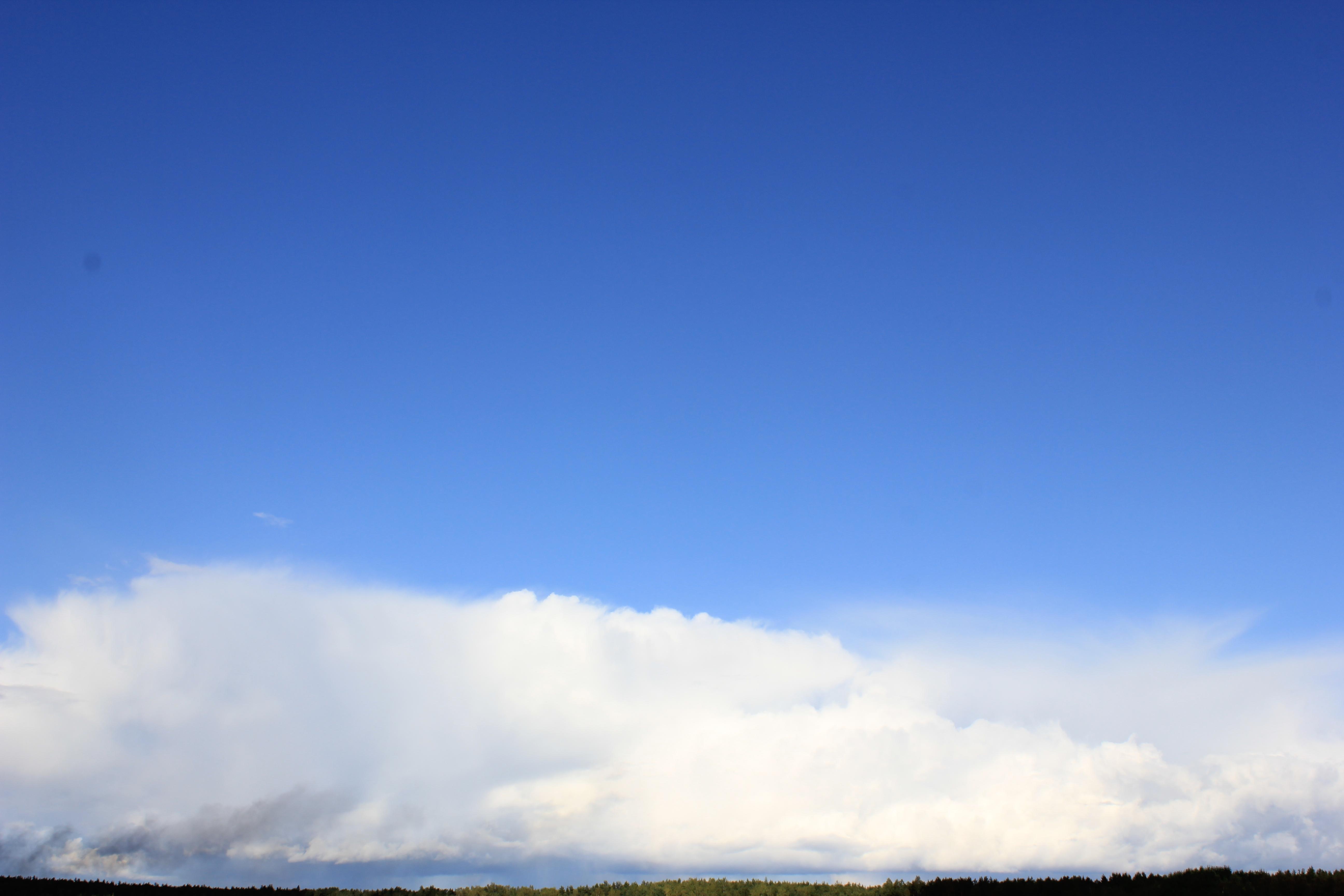 голубое дождливое небо (27)