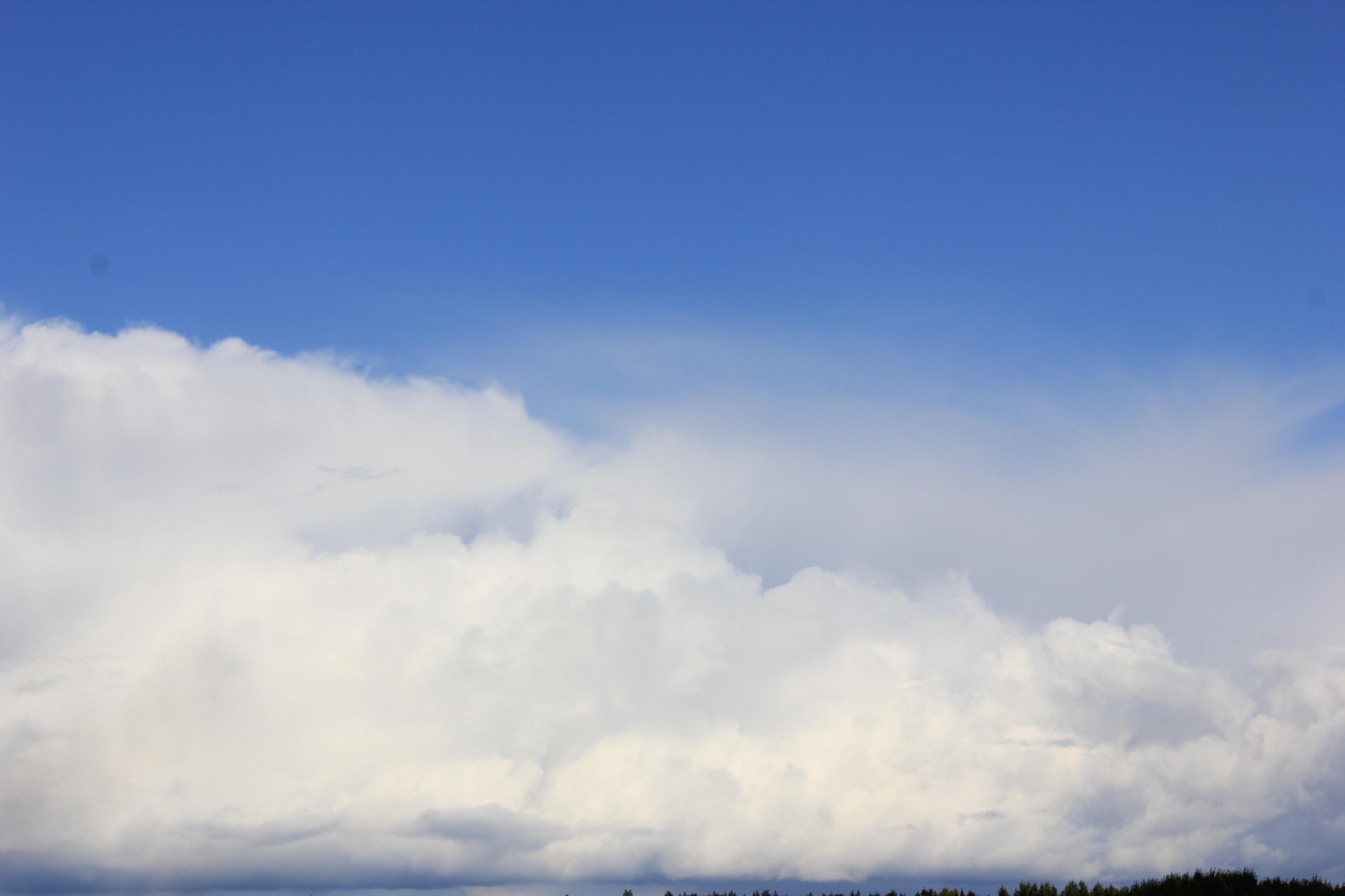 голубое дождливое небо (28)