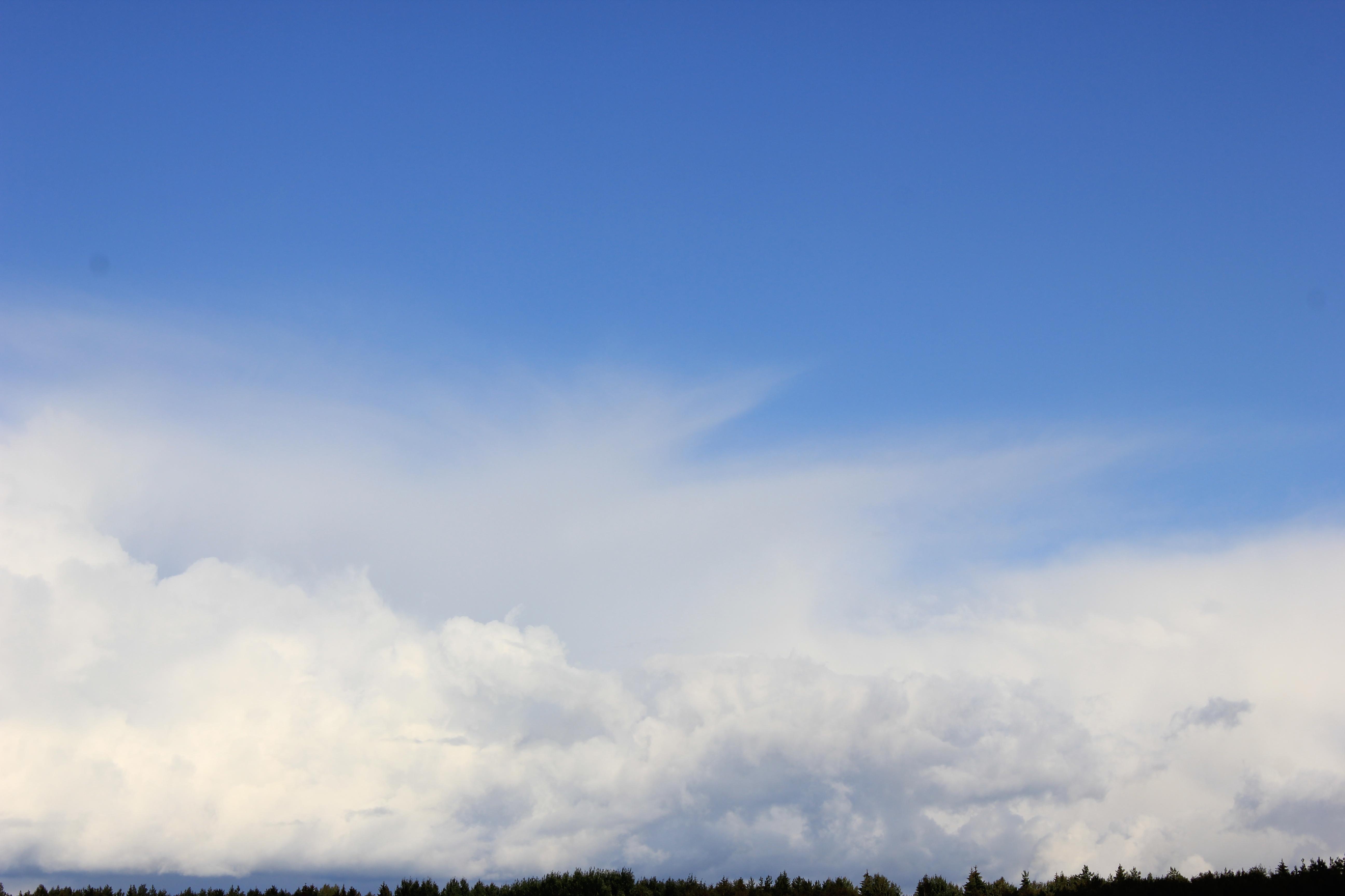 голубое дождливое небо (29)