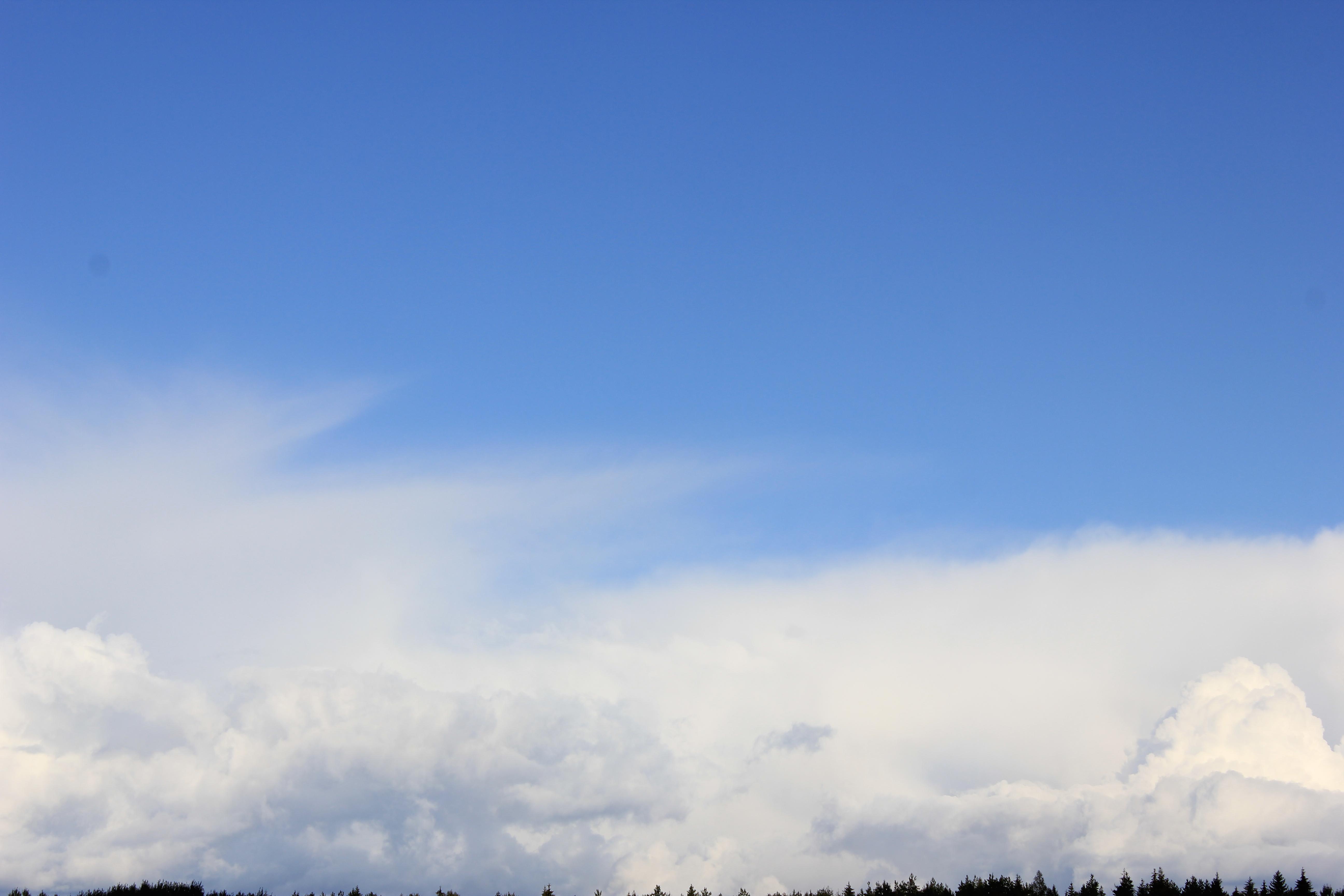 голубое дождливое небо (30)