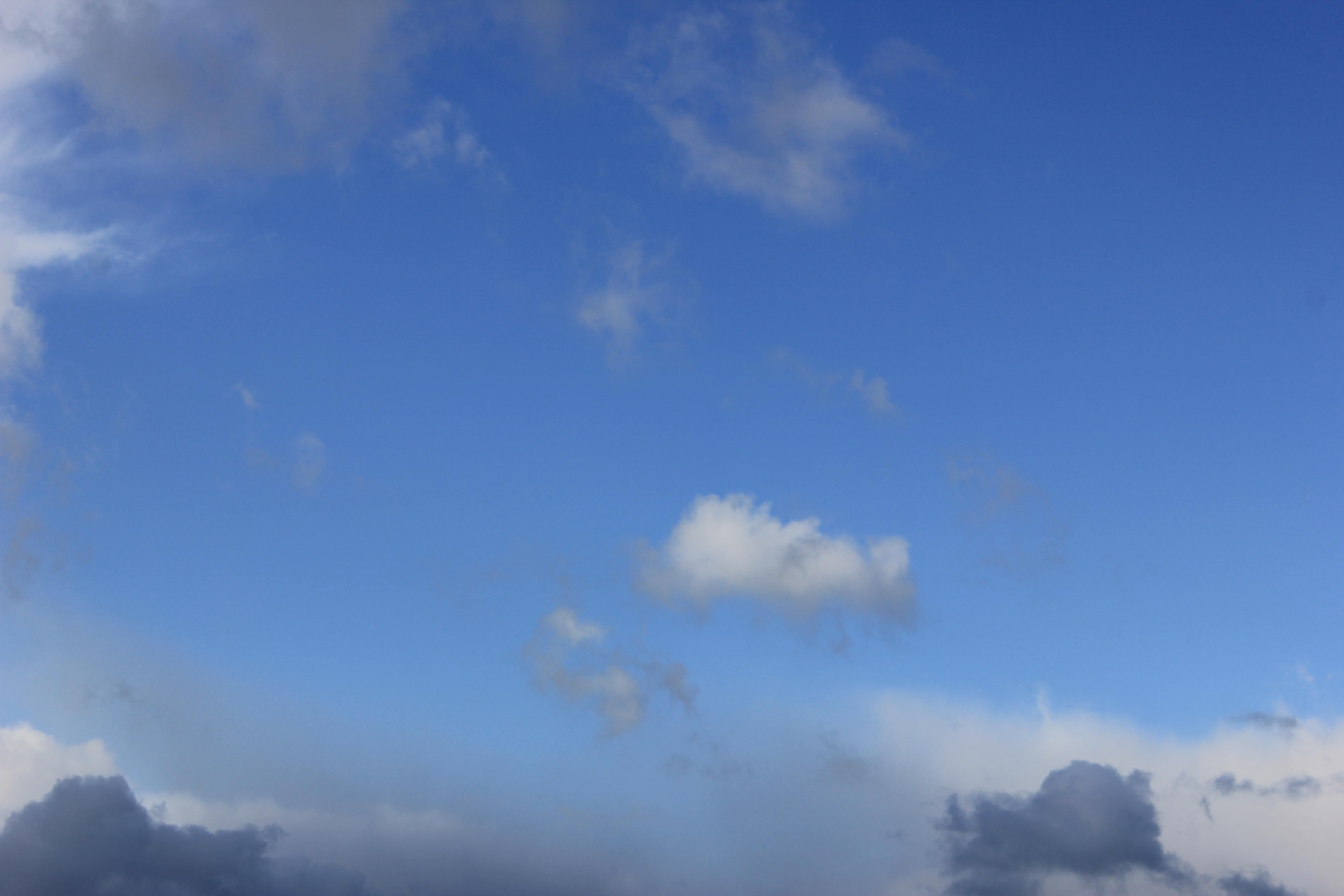 голубое дождливое небо (31)