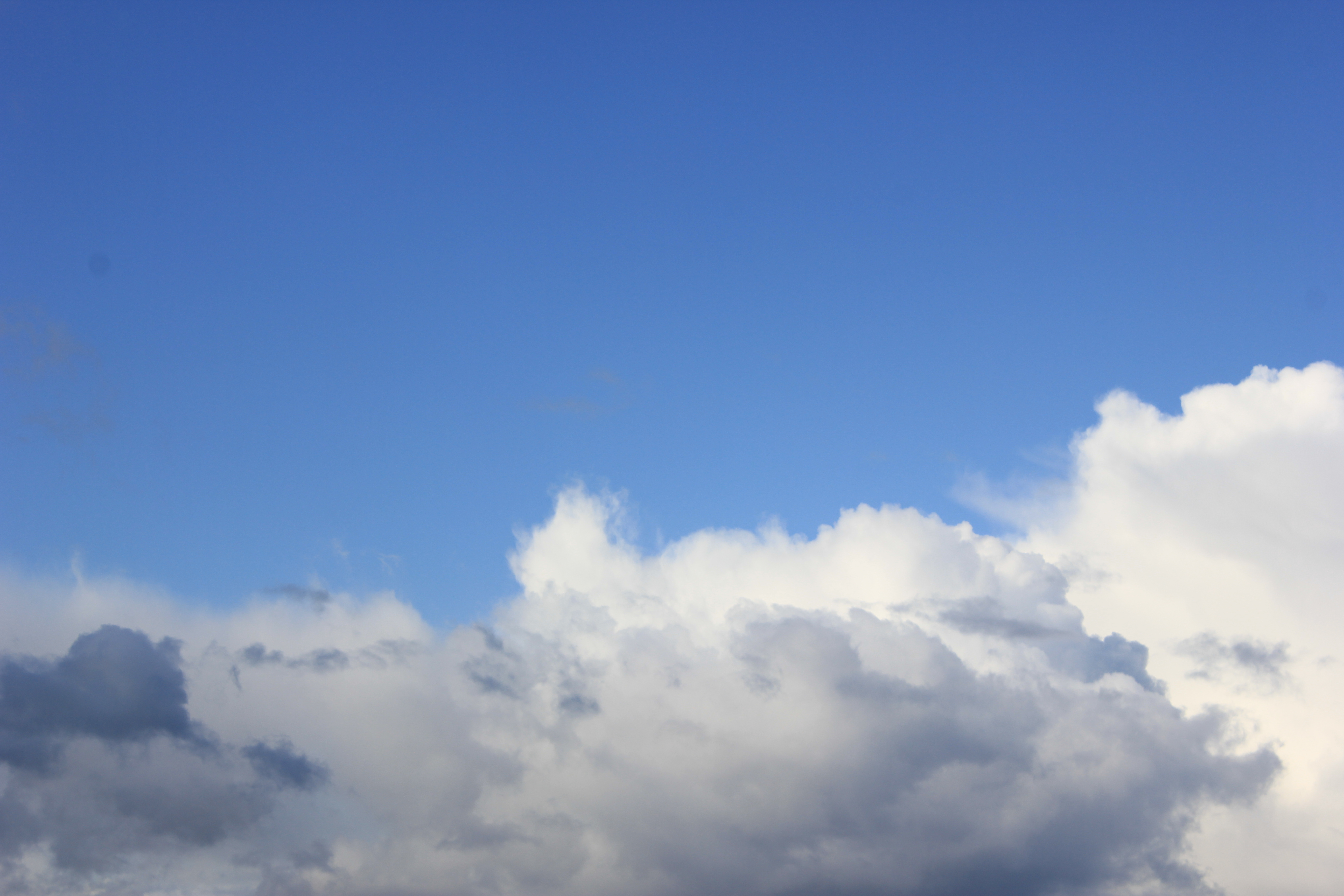 голубое дождливое небо (32)