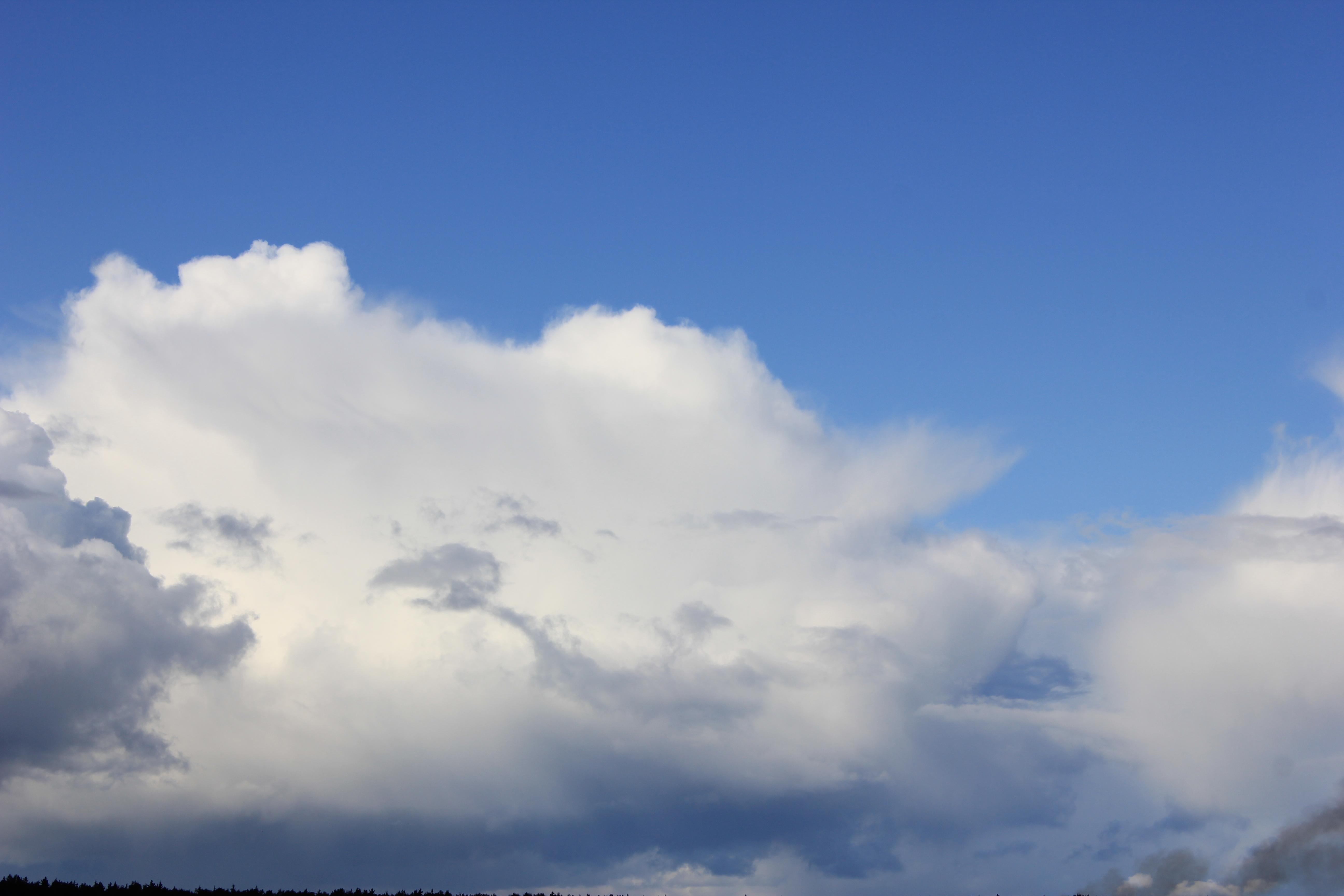 голубое дождливое небо (34)