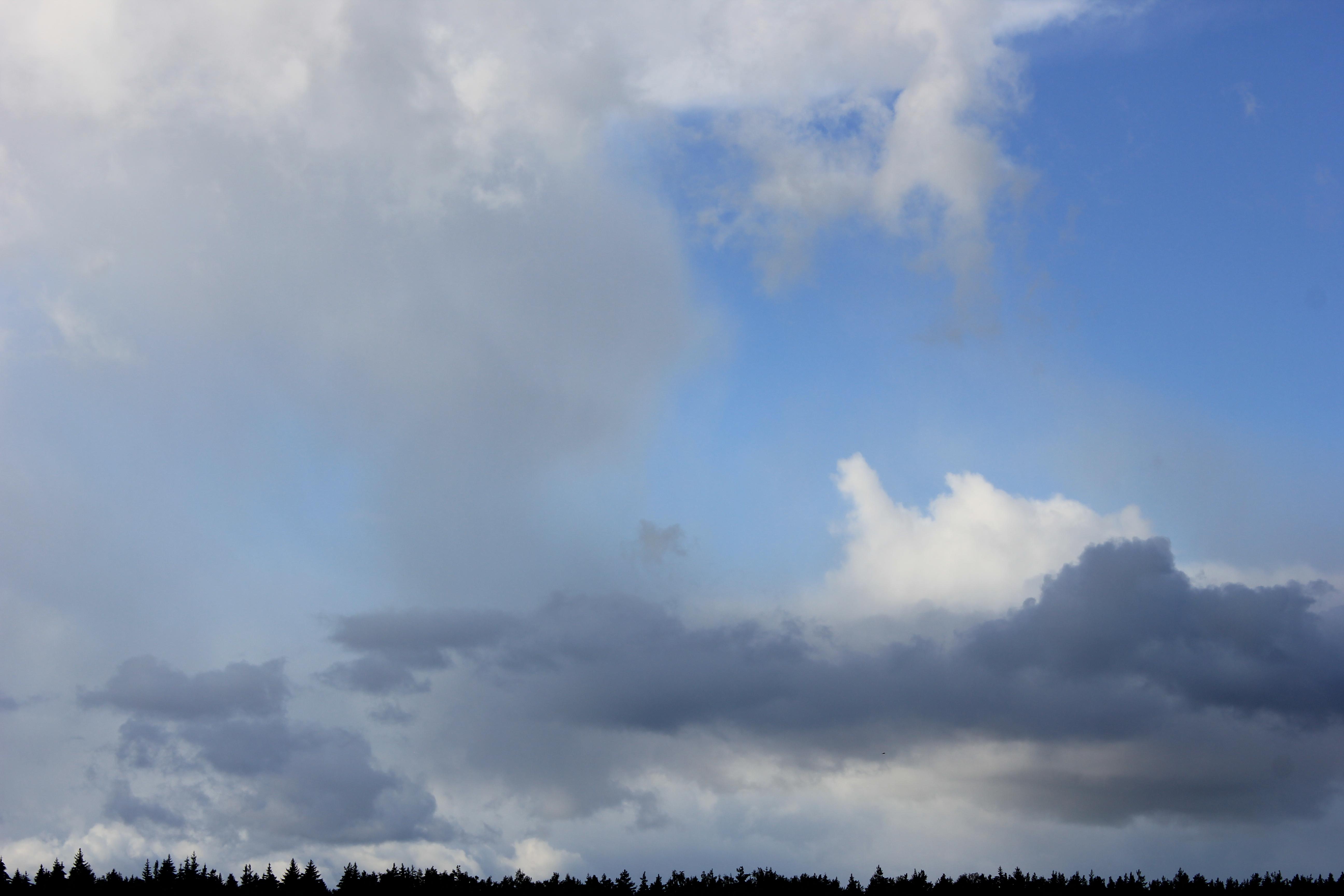 голубое дождливое небо (39)
