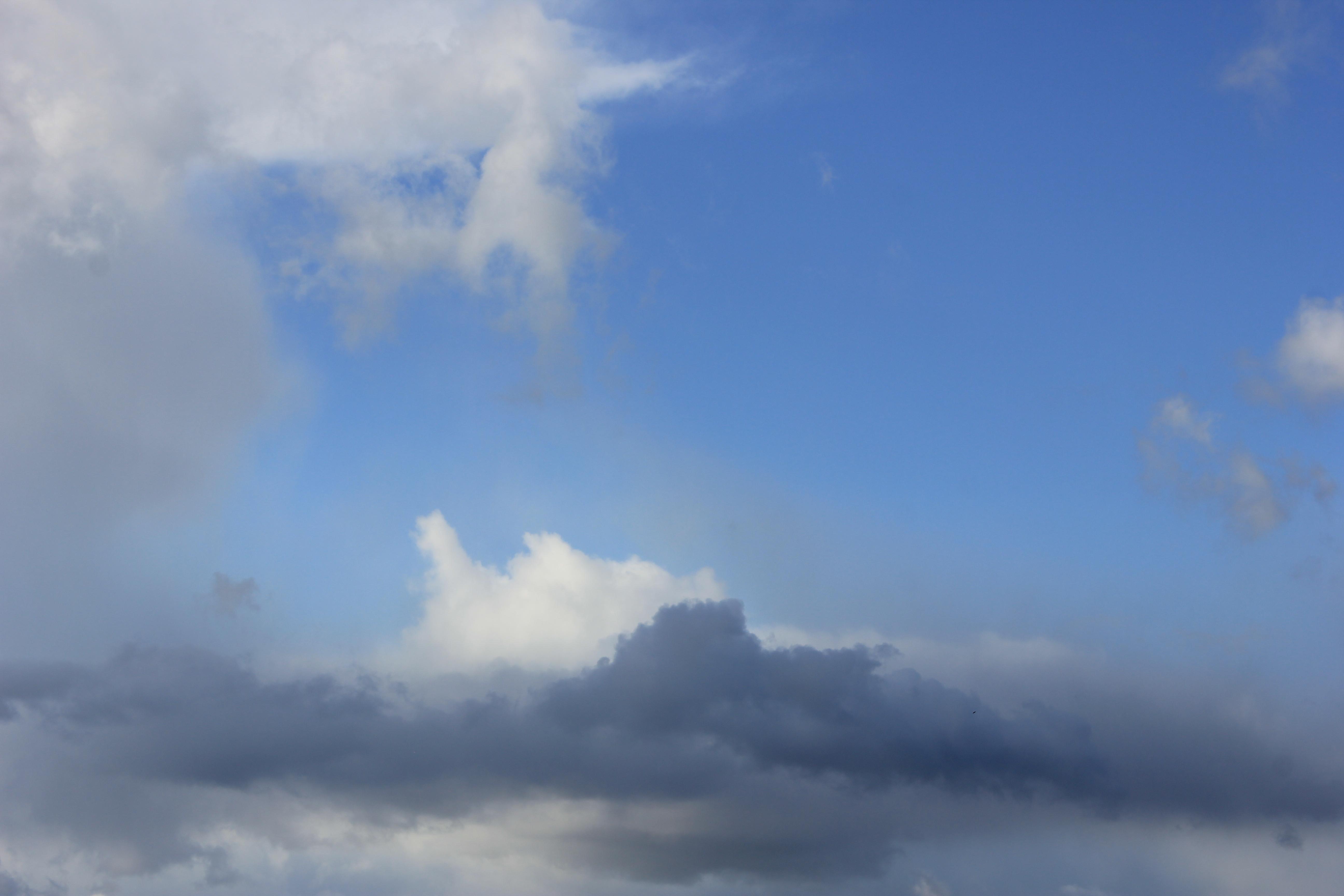 голубое дождливое небо (40)