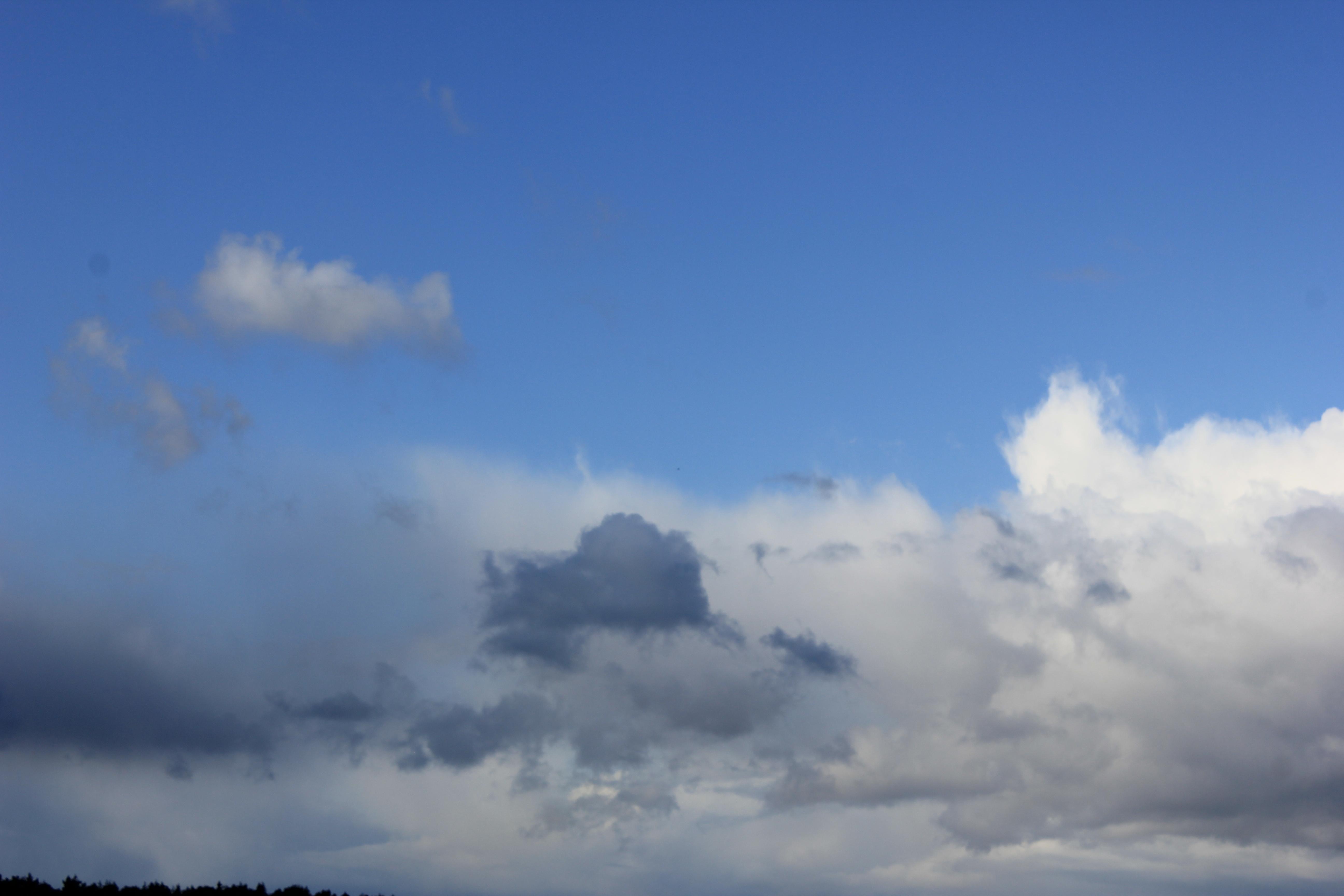 голубое дождливое небо (41)