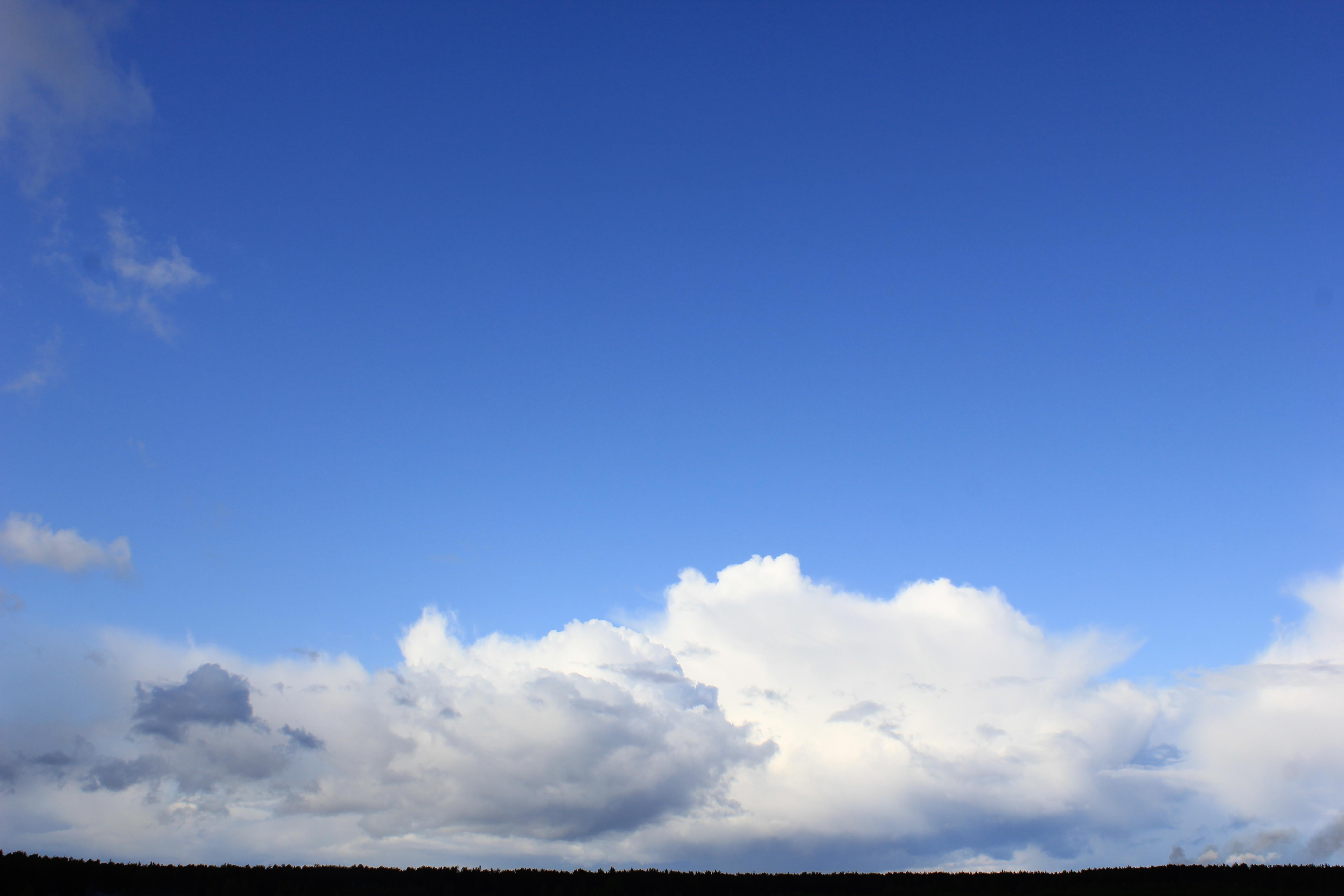 голубое дождливое небо (44)