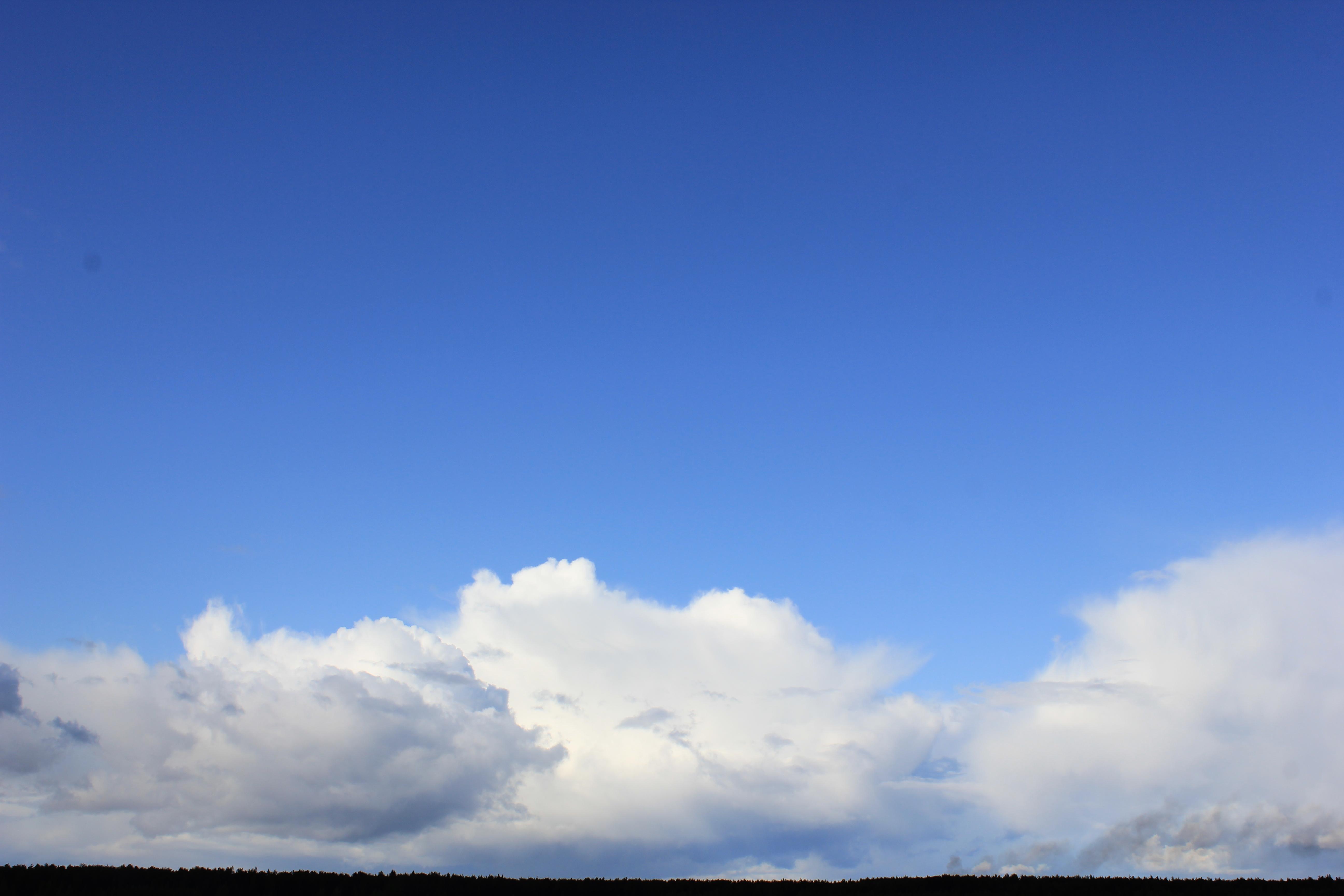 голубое дождливое небо (45)