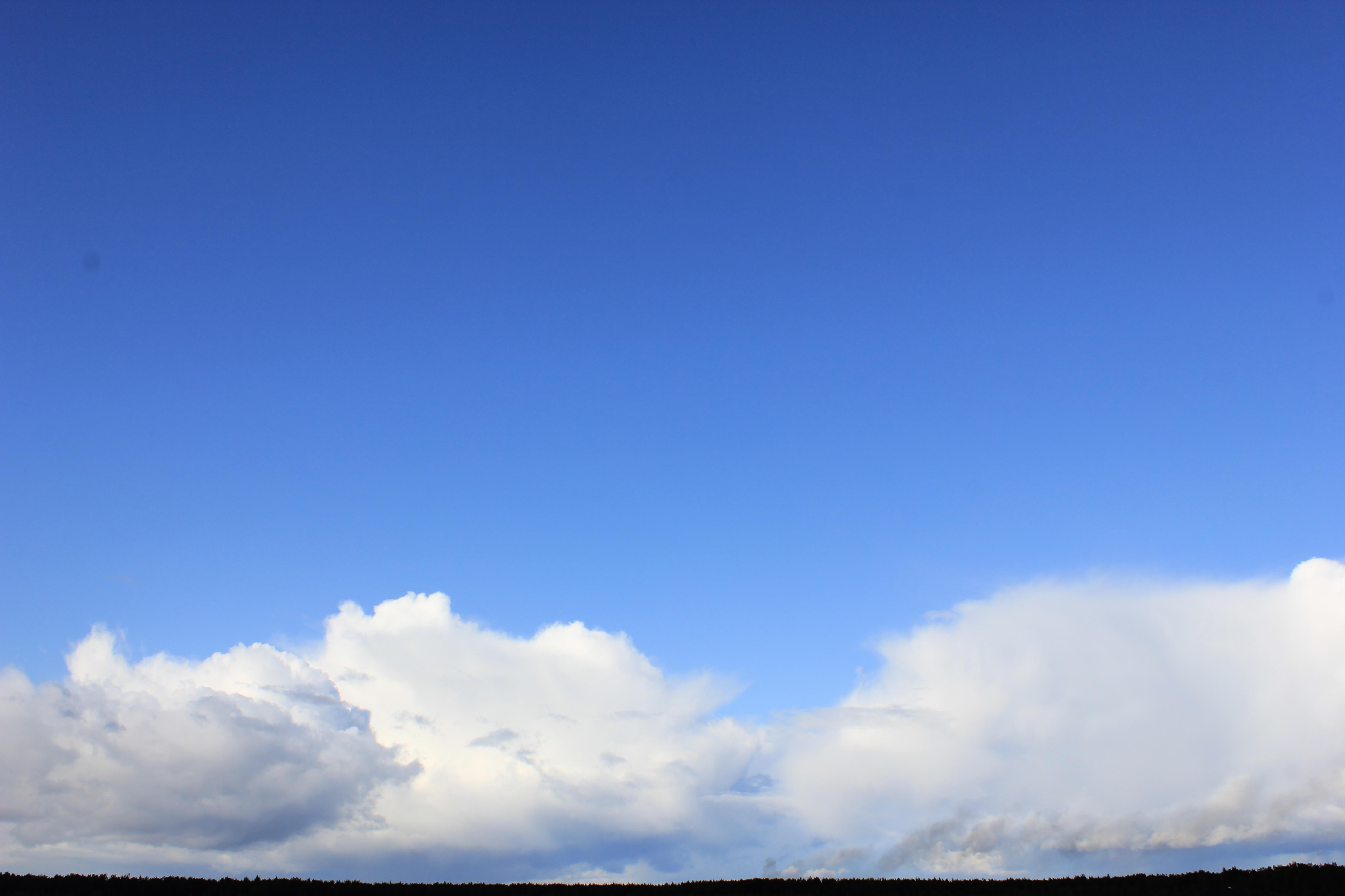 голубое дождливое небо (46)