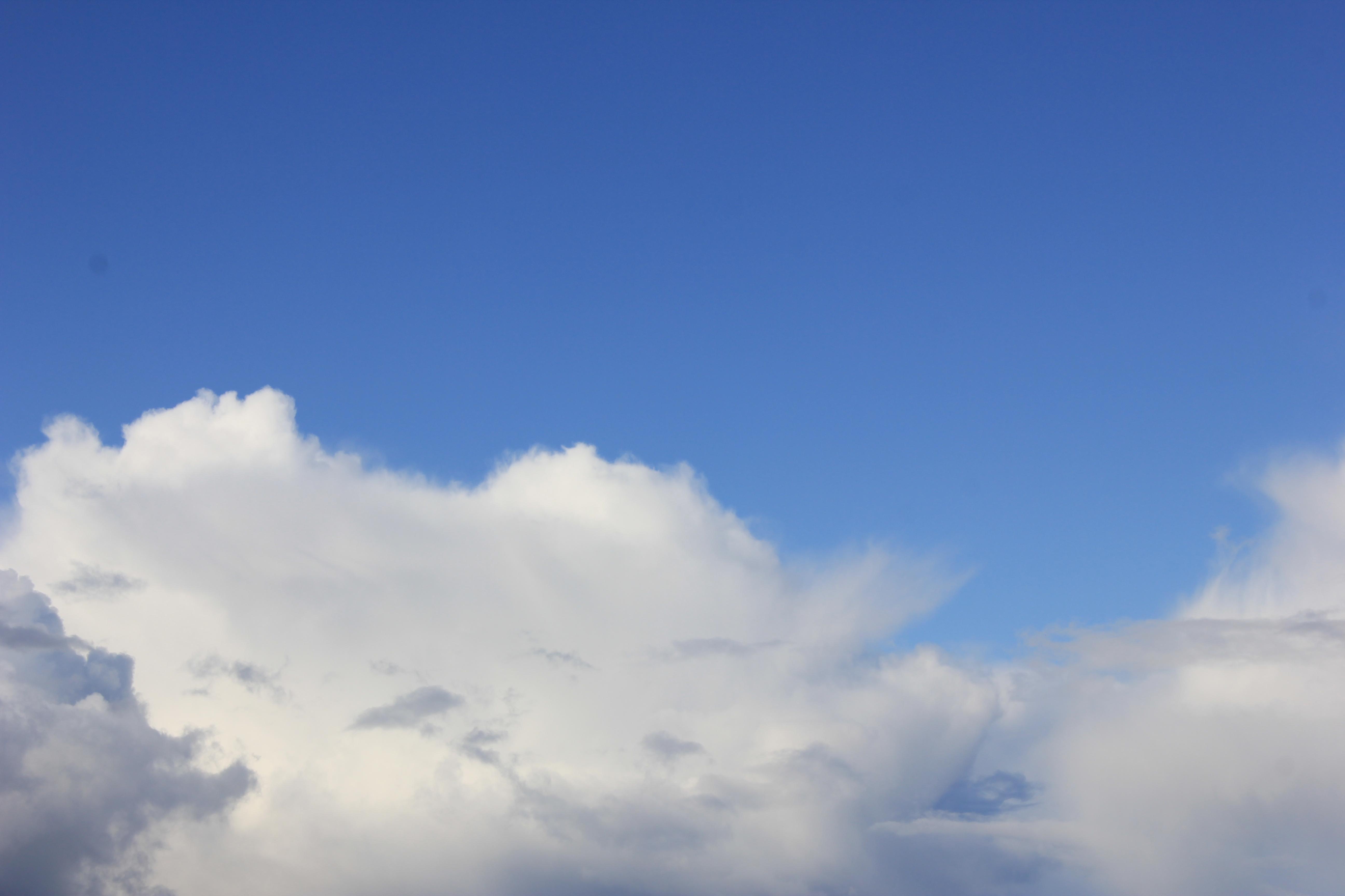 голубое дождливое небо (47)