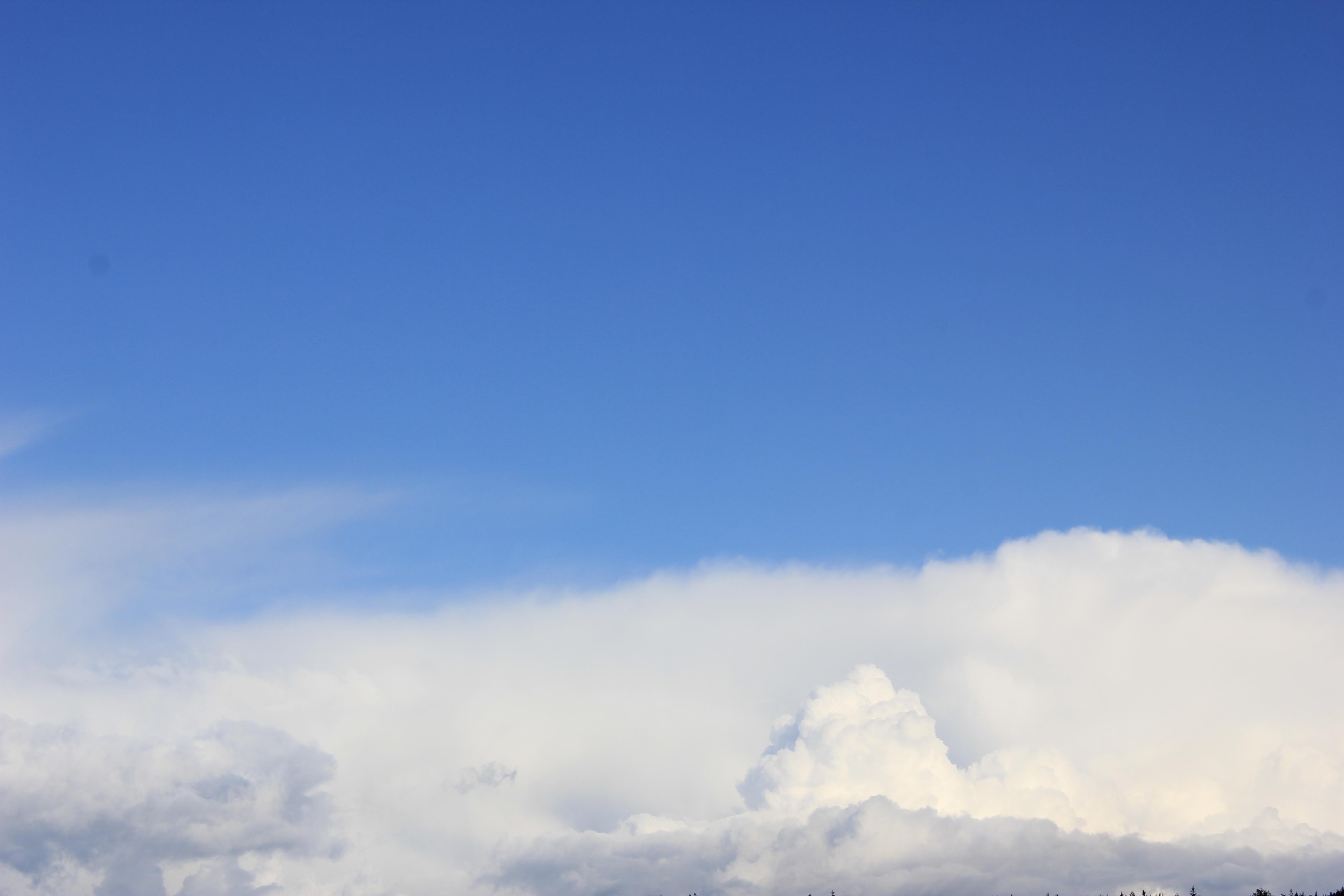 голубое дождливое небо (49)