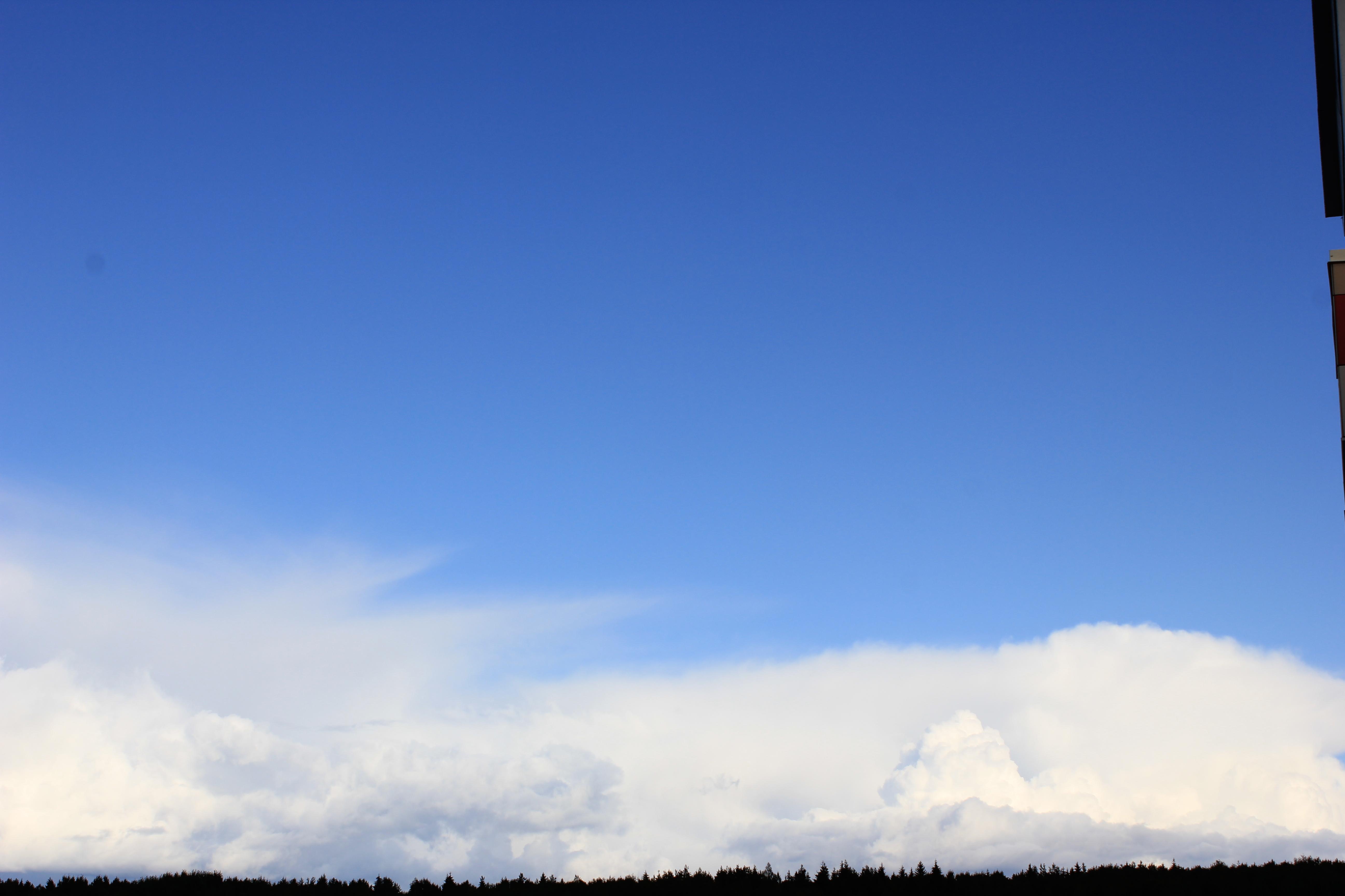 голубое дождливое небо (50)