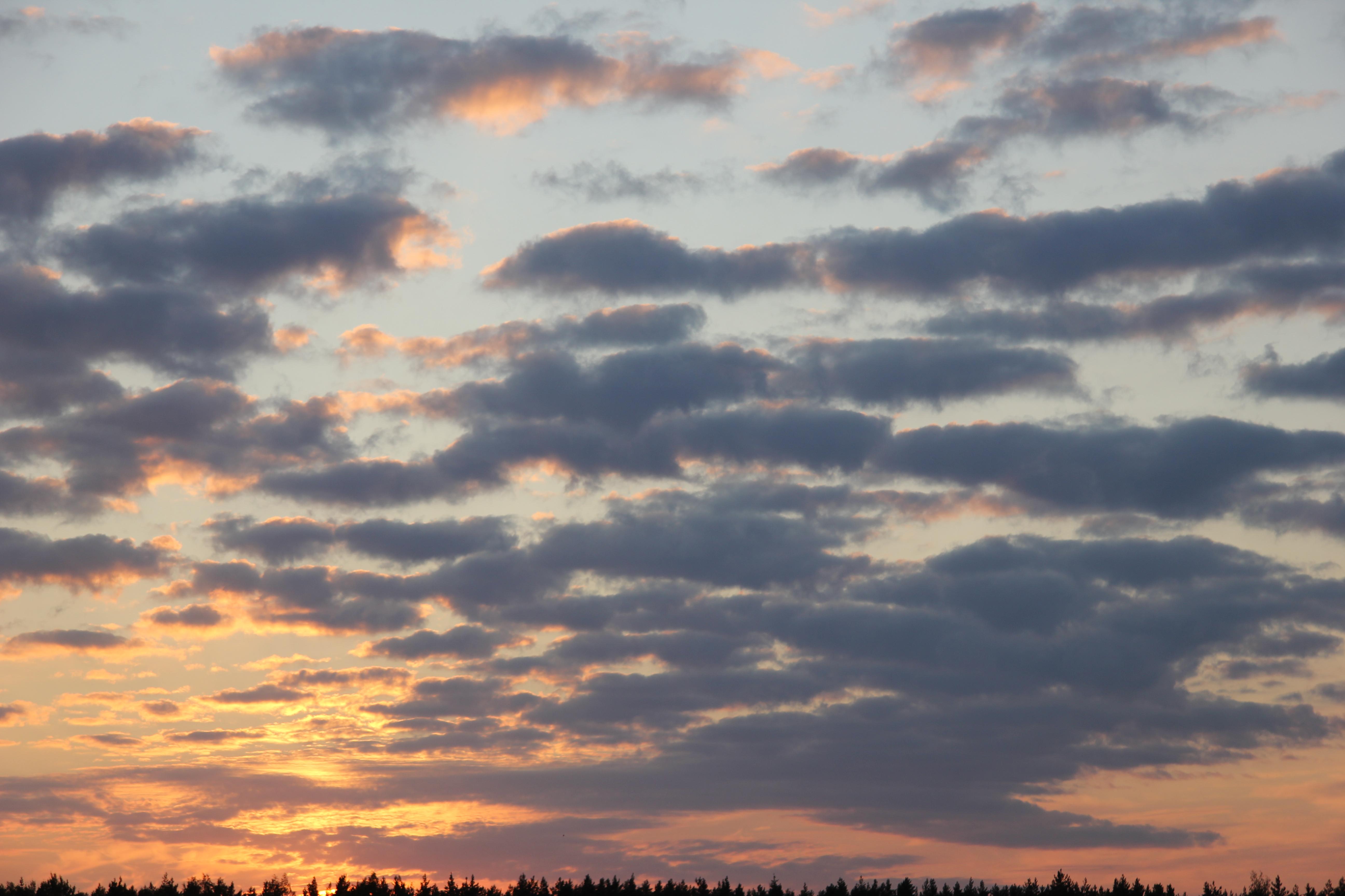 небо после захода солнца (11)