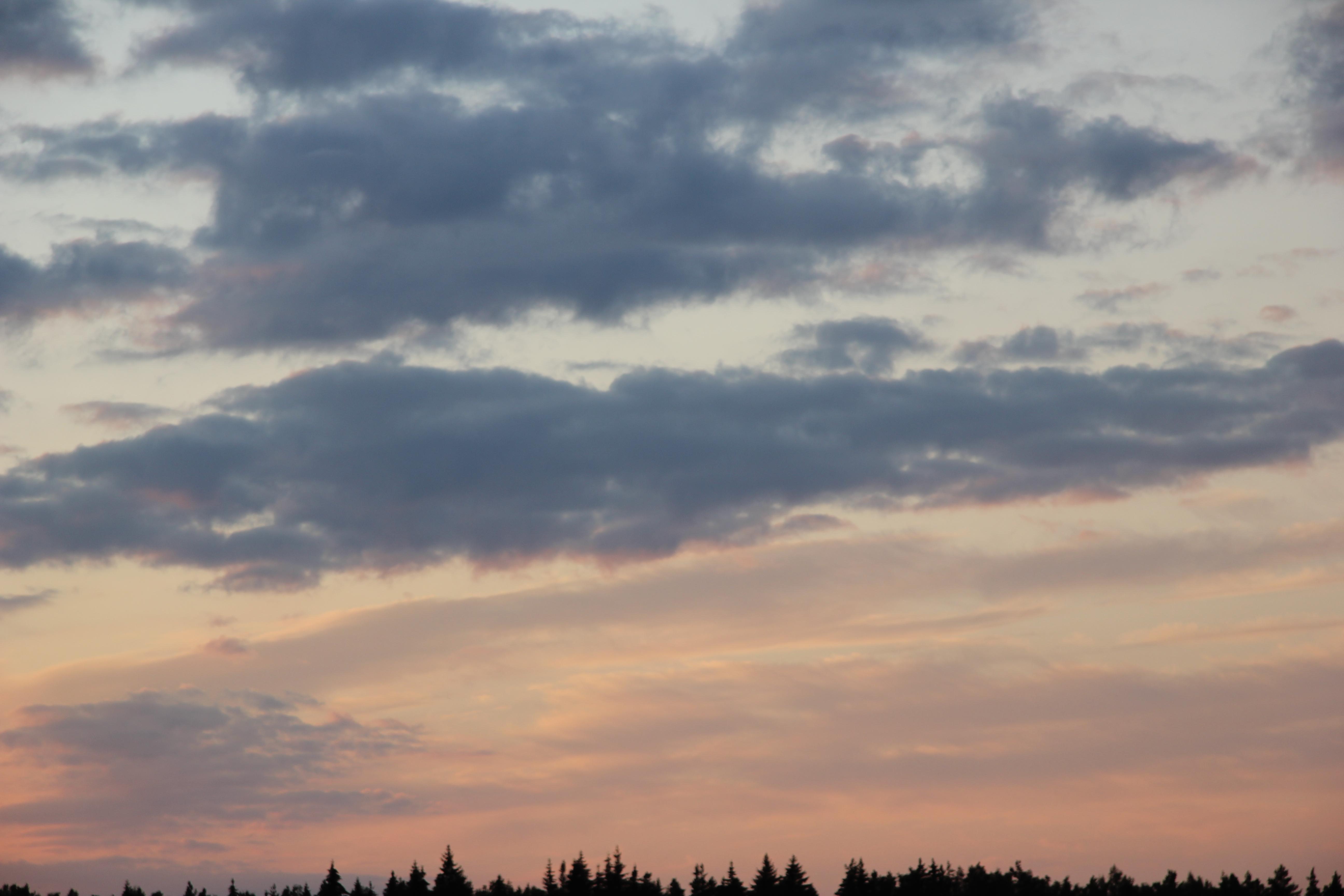 небо после захода солнца (18)