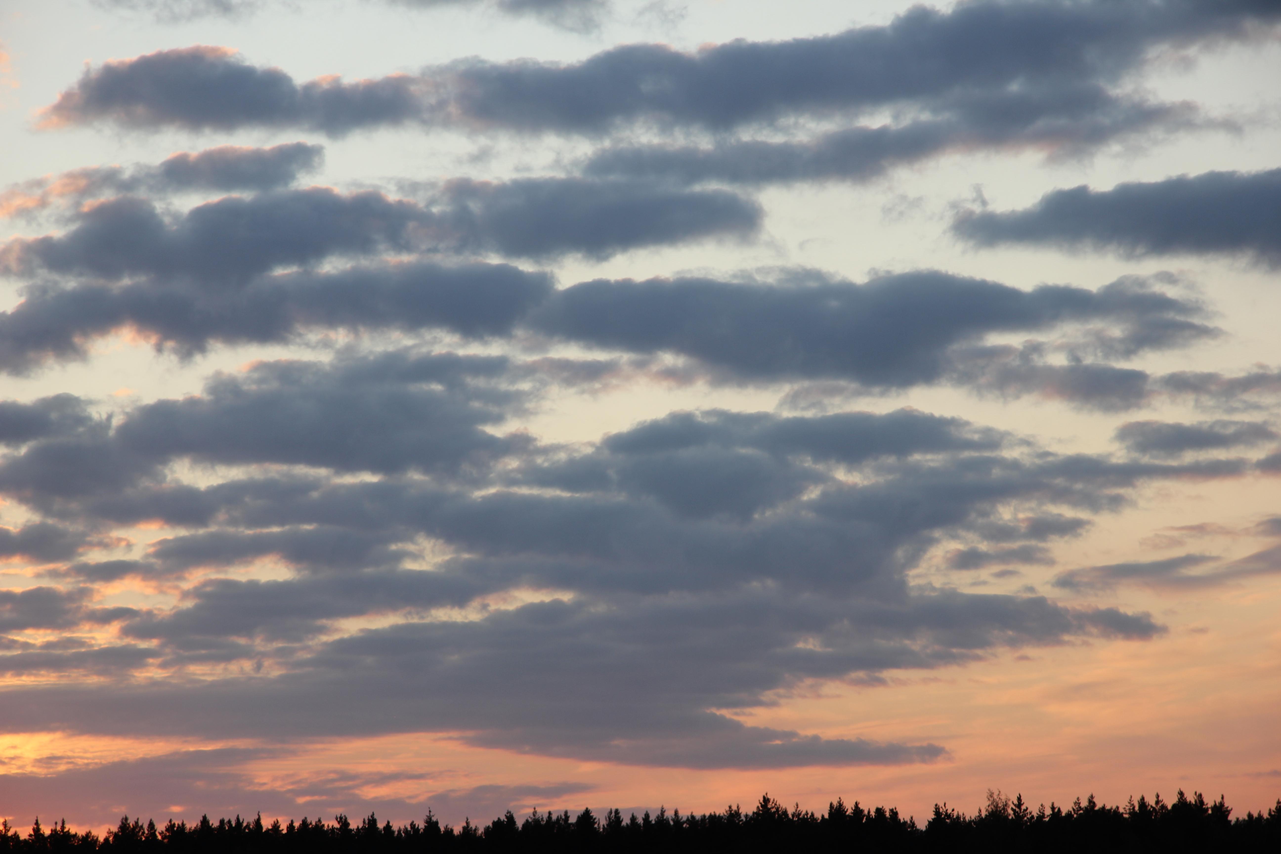небо после захода солнца (19)