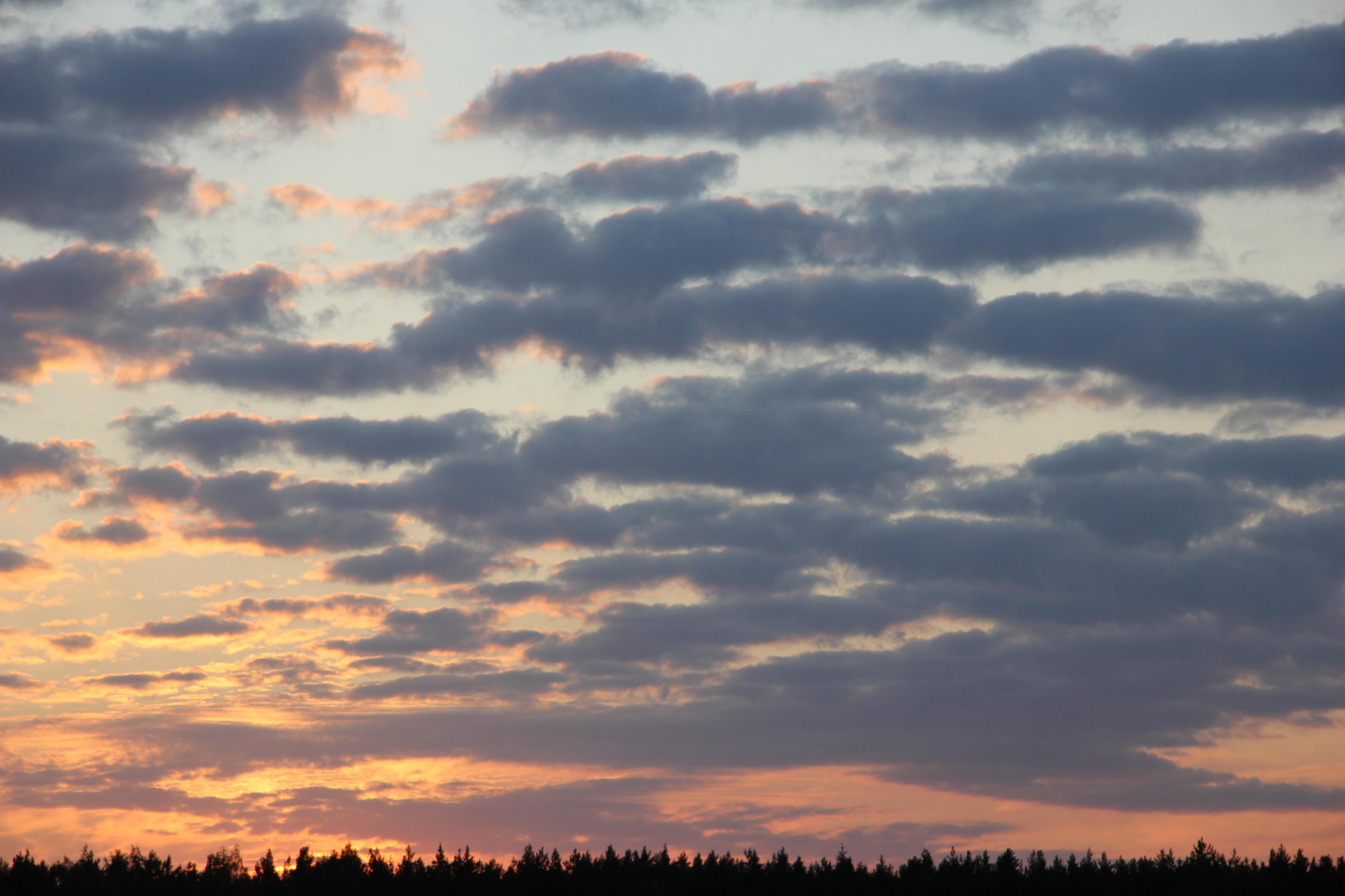 небо после захода солнца (21)
