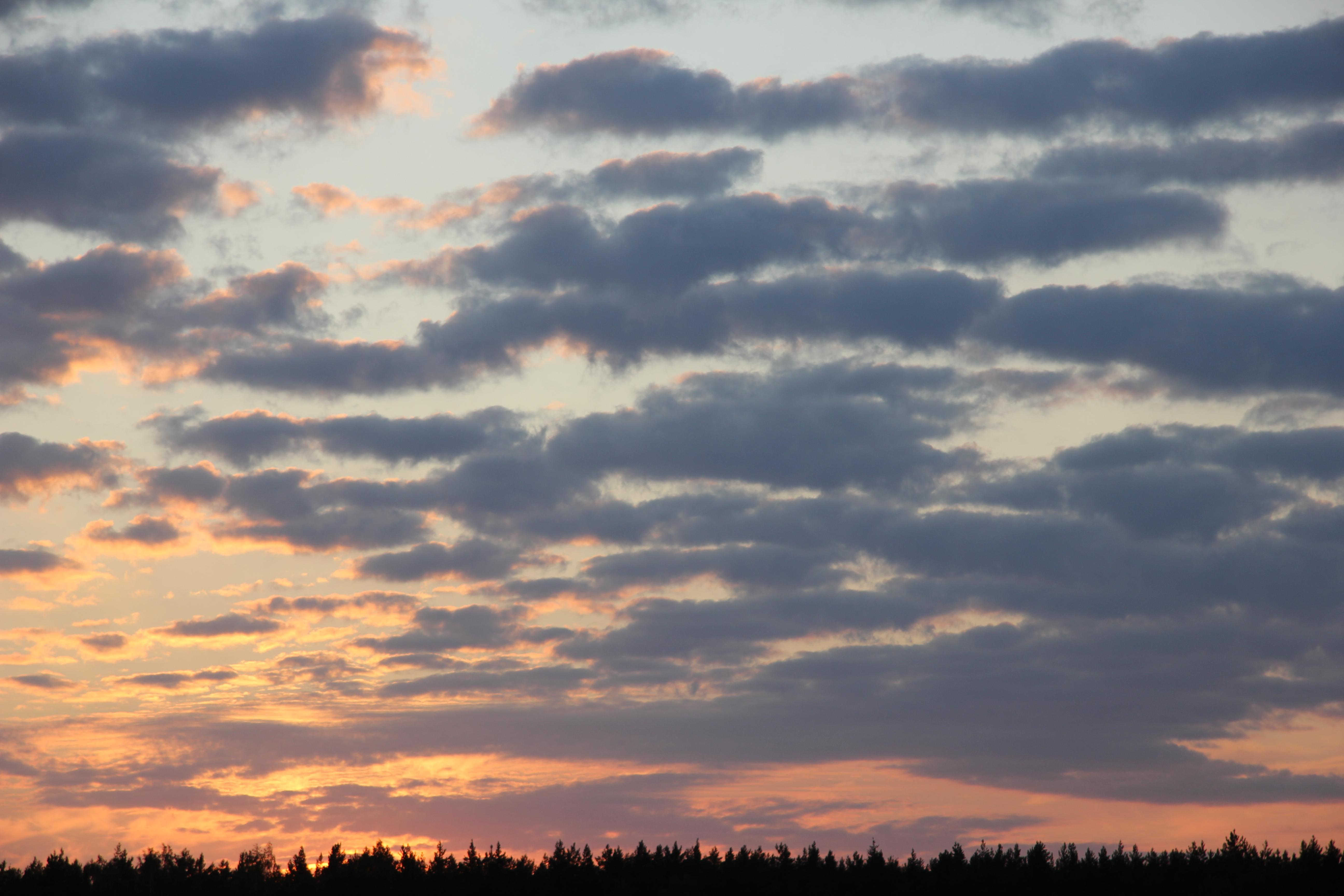 небо после захода солнца (22)