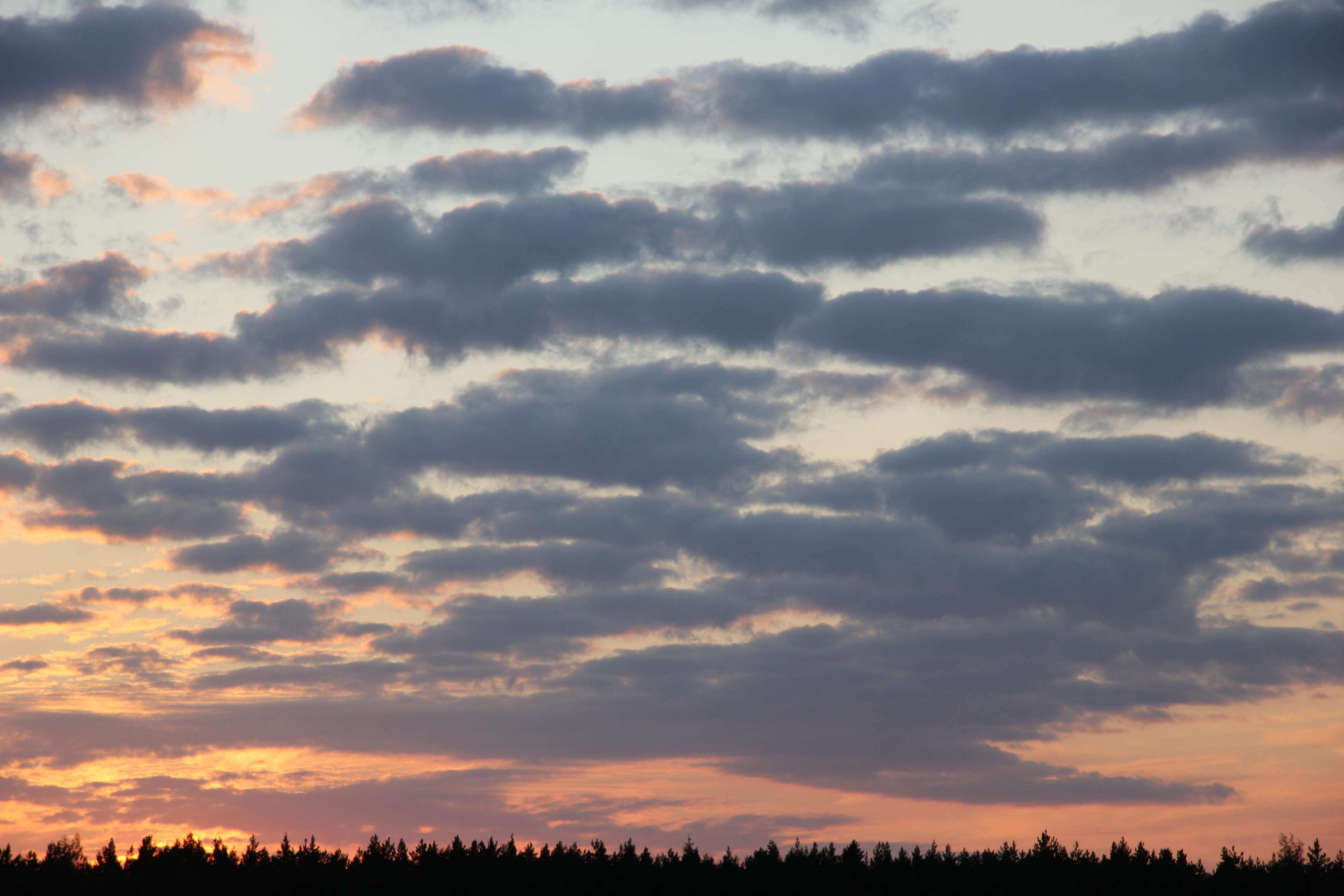 небо после захода солнца (23)