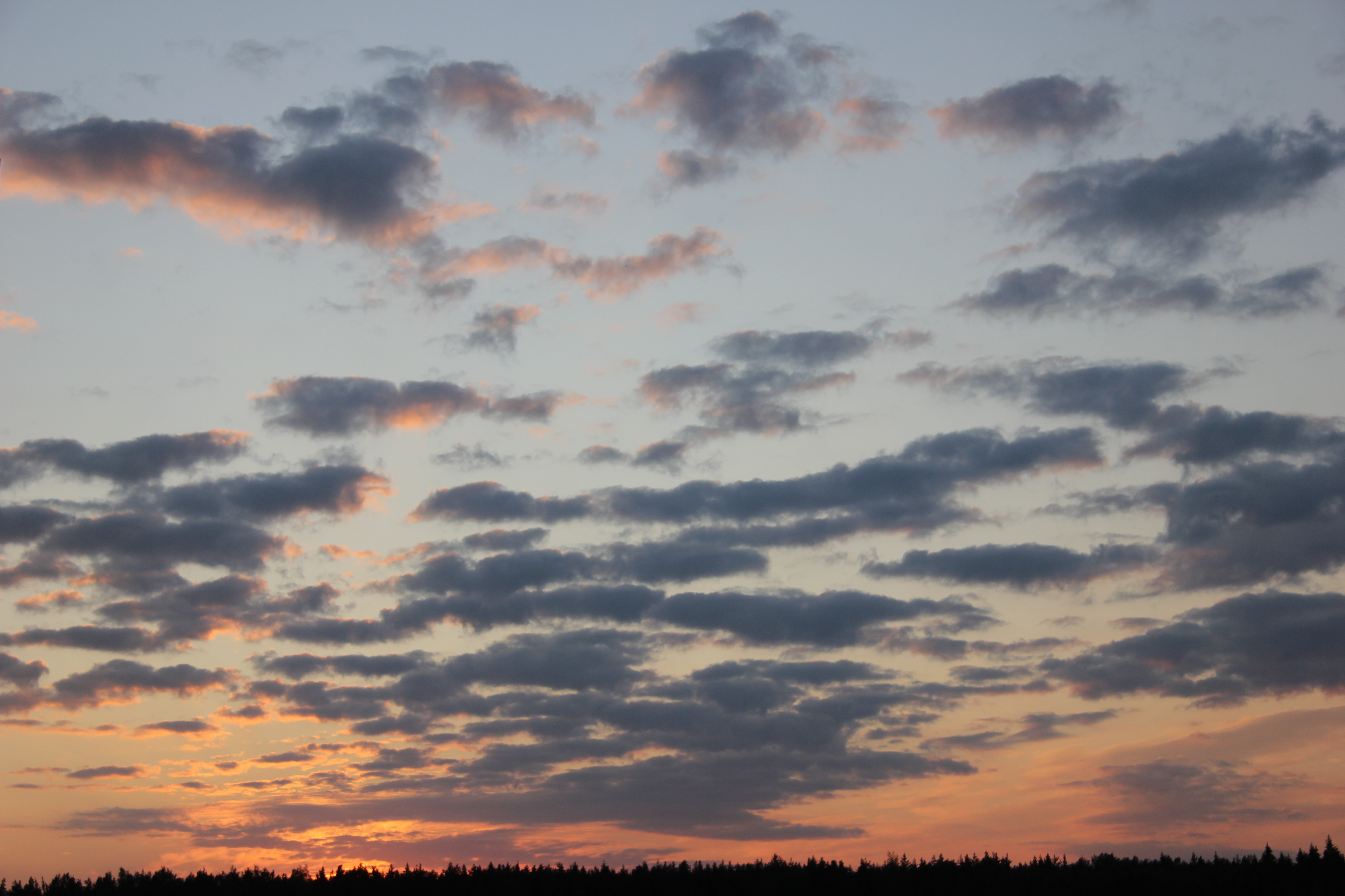 небо после захода солнца (25)