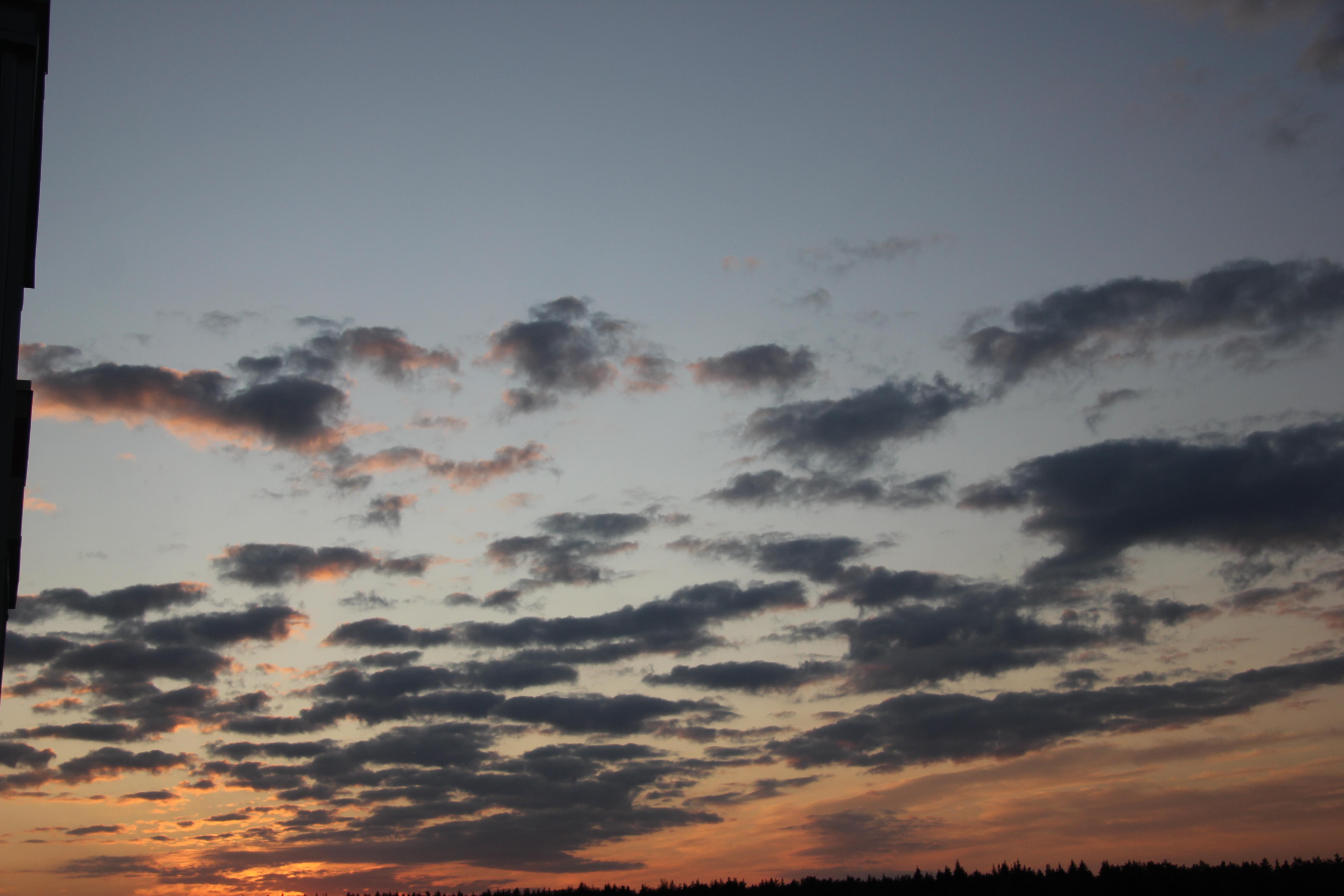 небо после захода солнца (26)