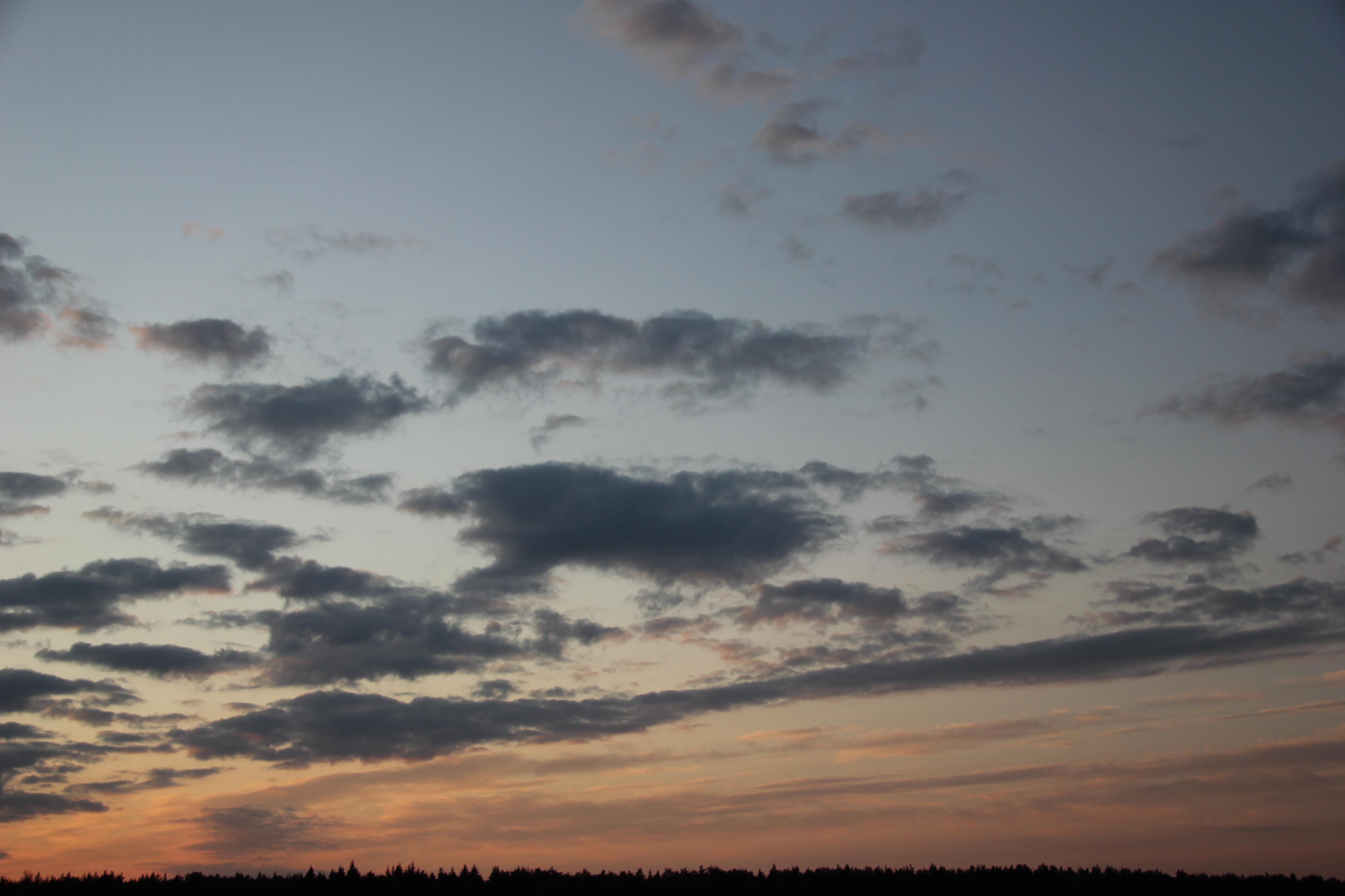 небо после захода солнца (27)